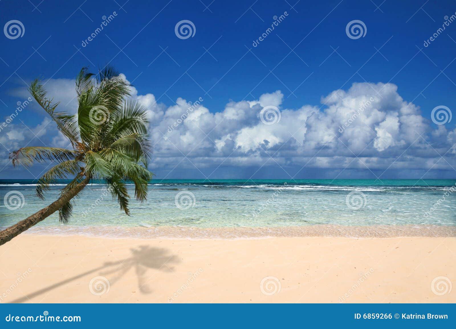 пляж Гавайские островы совершенные
