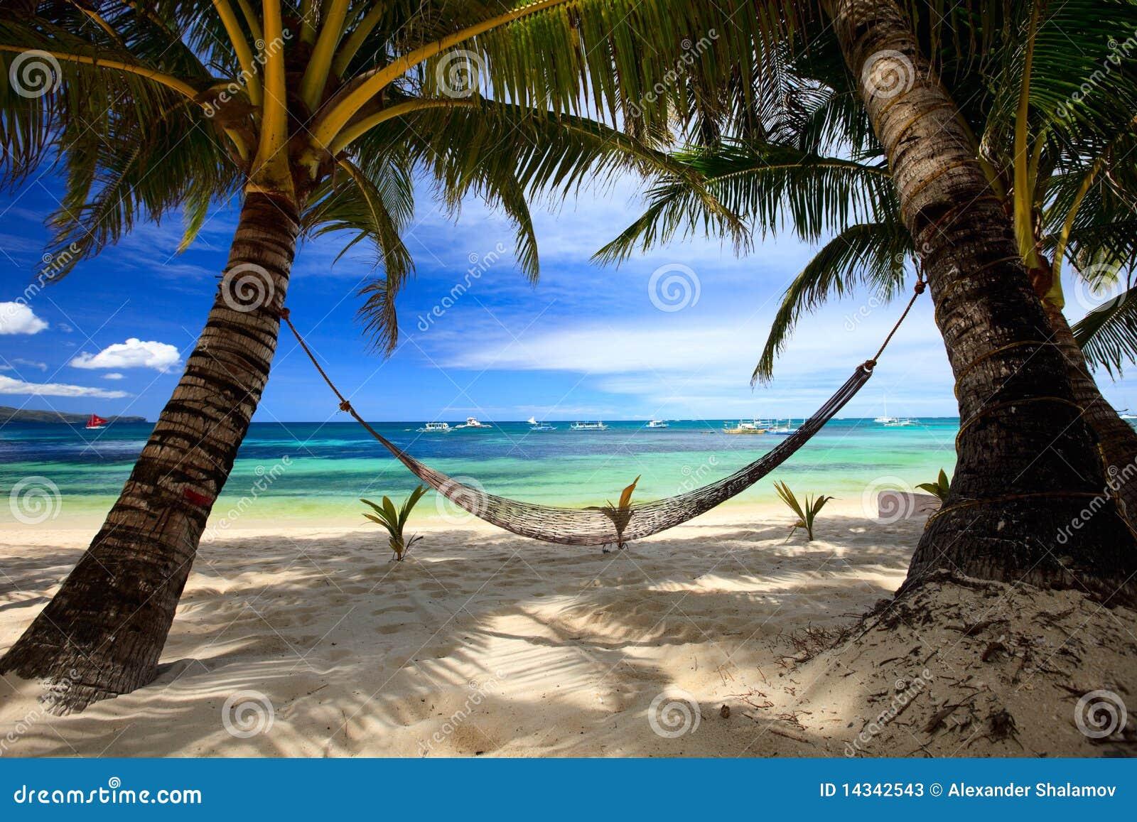 пляж совершенный