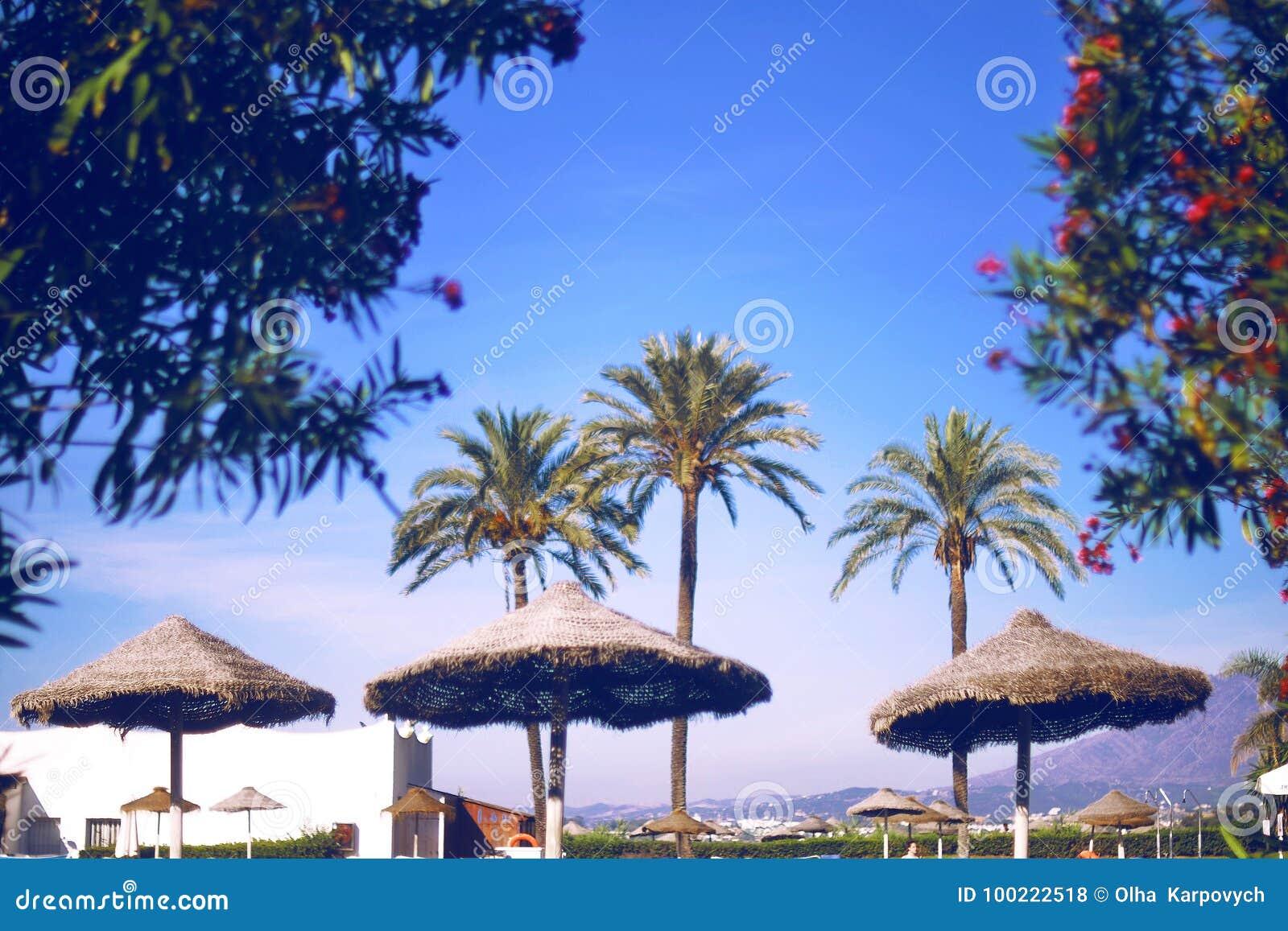 Пляж с зонтиком и ладонями пляжа винтажный фильтр Небеса лета уха ¡ Ð Мода, перемещение, лето,