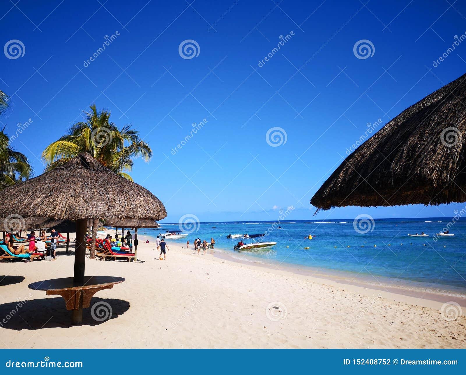 Пляж с солнечностью