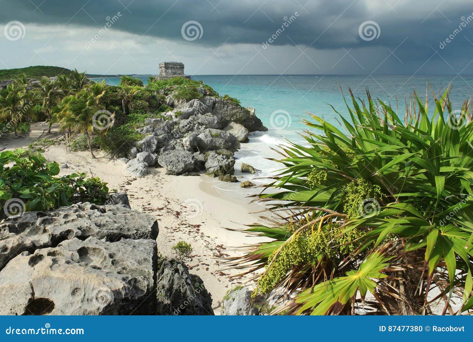 Побережье карибского моря около Tulum