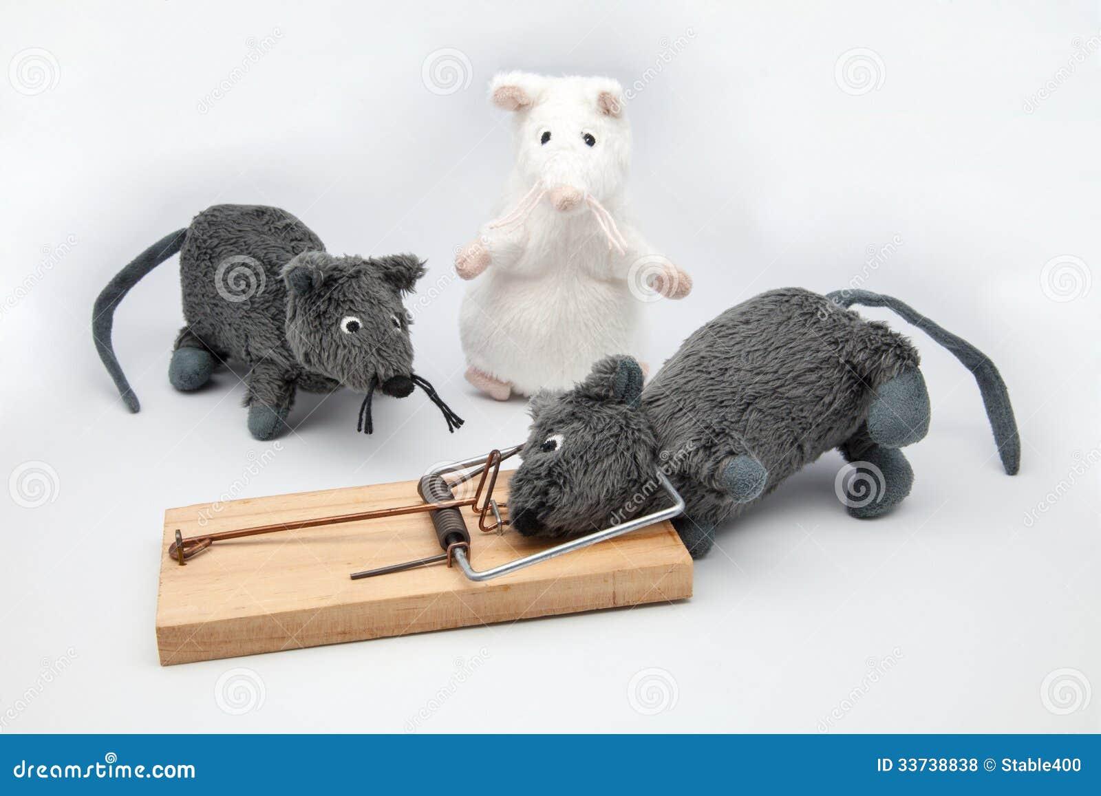 Поглощенная мышь