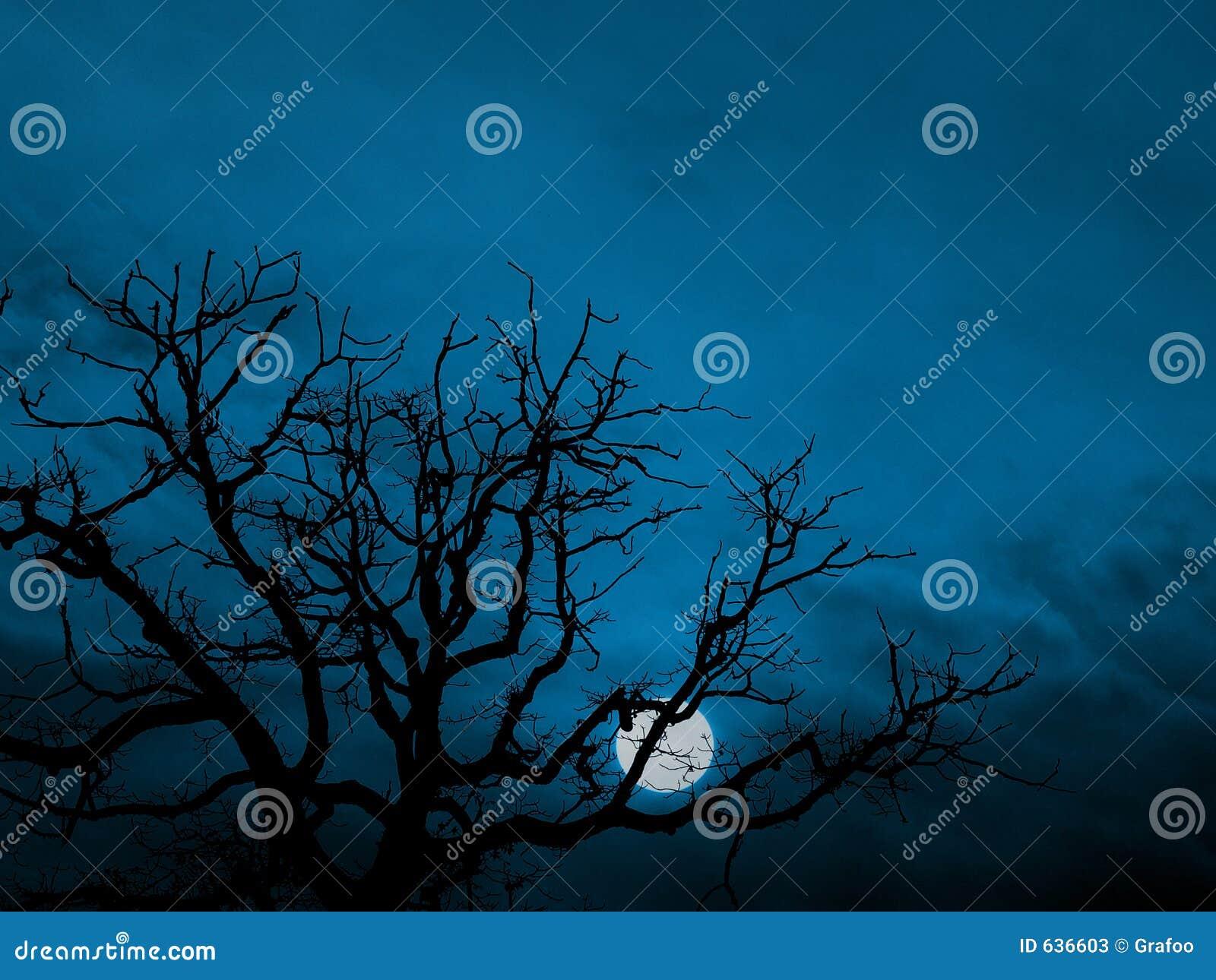 Download Поднимая луна стоковое изображение. изображение насчитывающей место - 636603