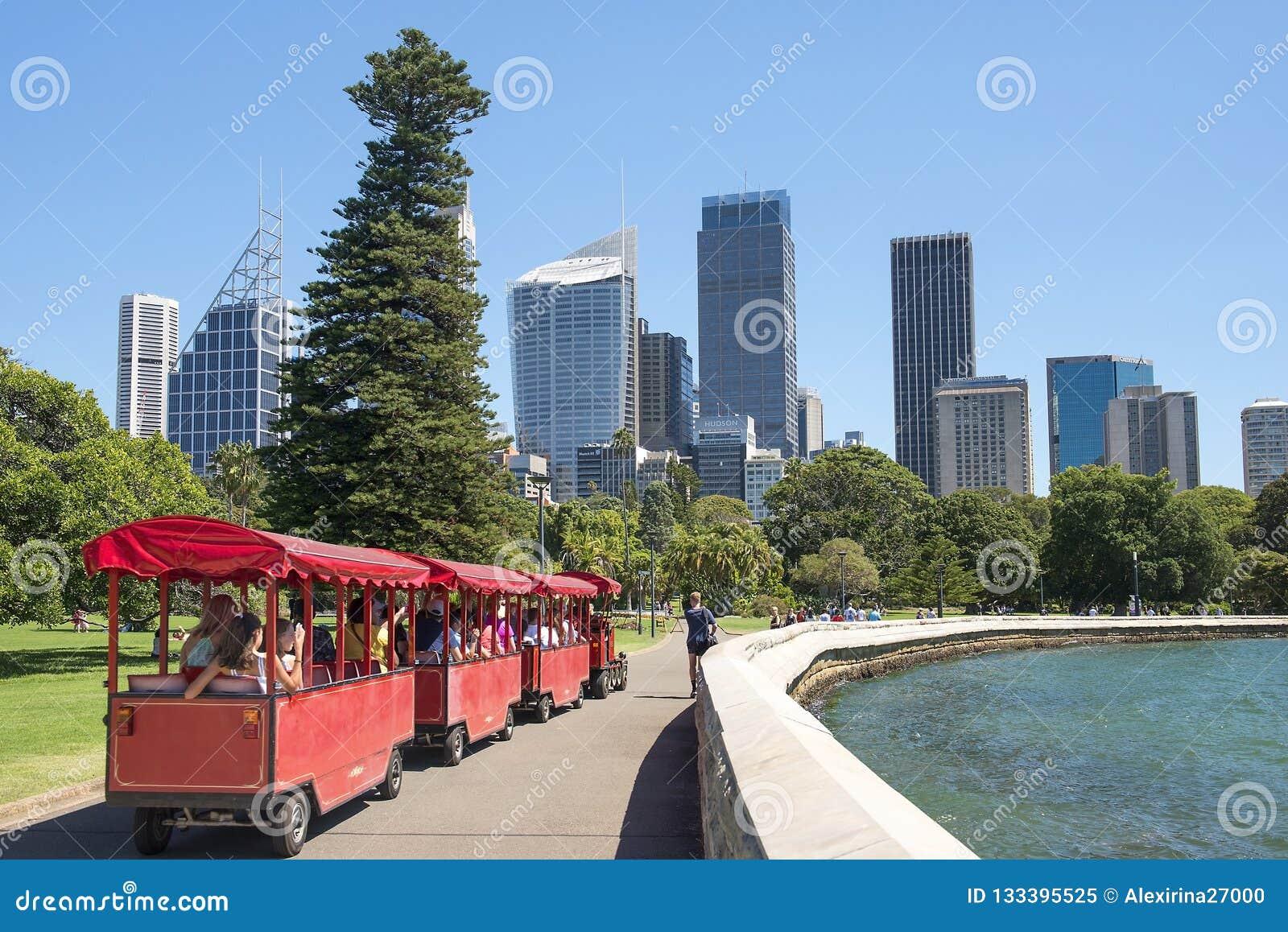 Поезд детей на портовом районе Сиднея