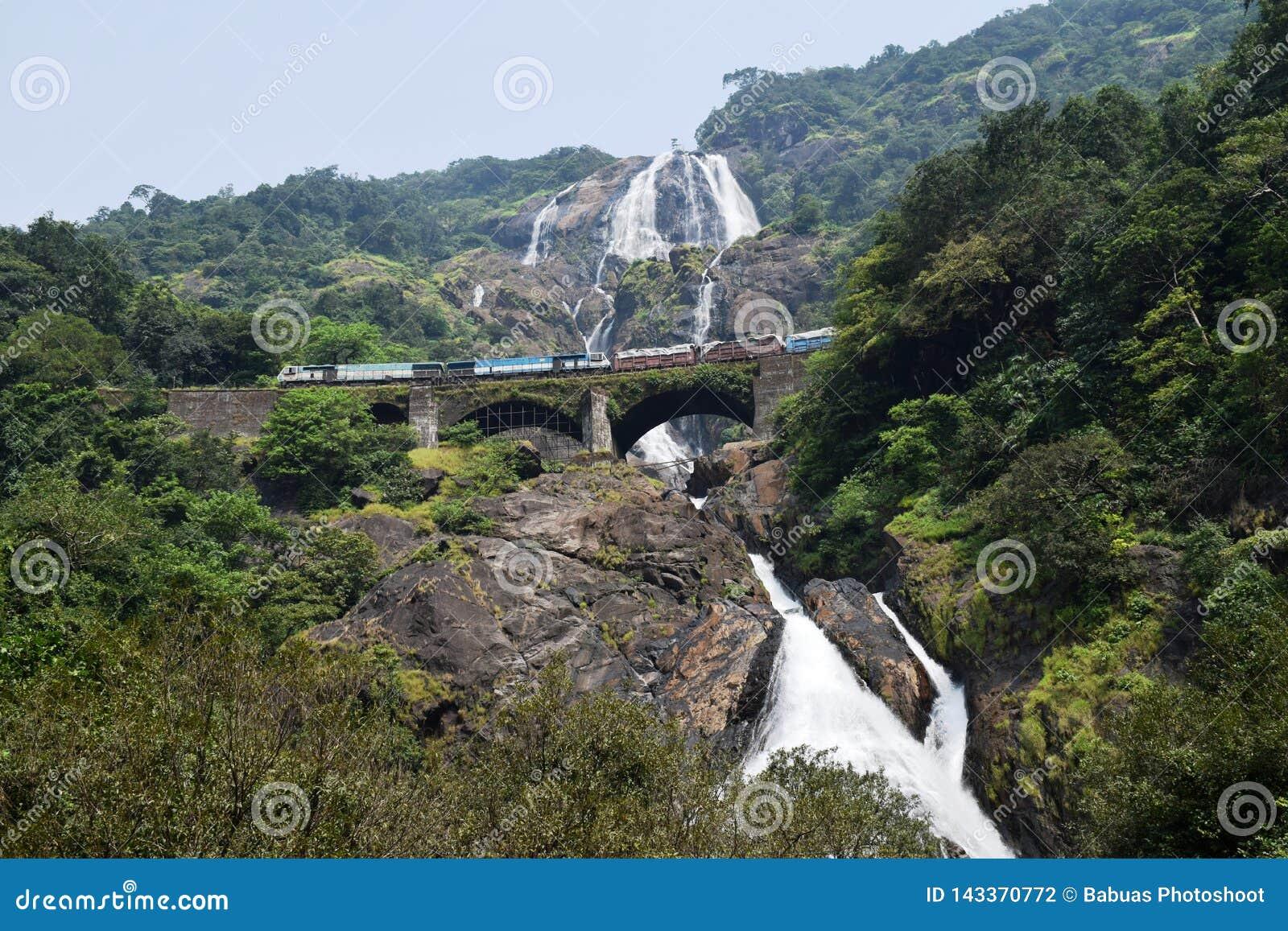 Поезд траверсируя мост над величественными водопадами Dudhsagar