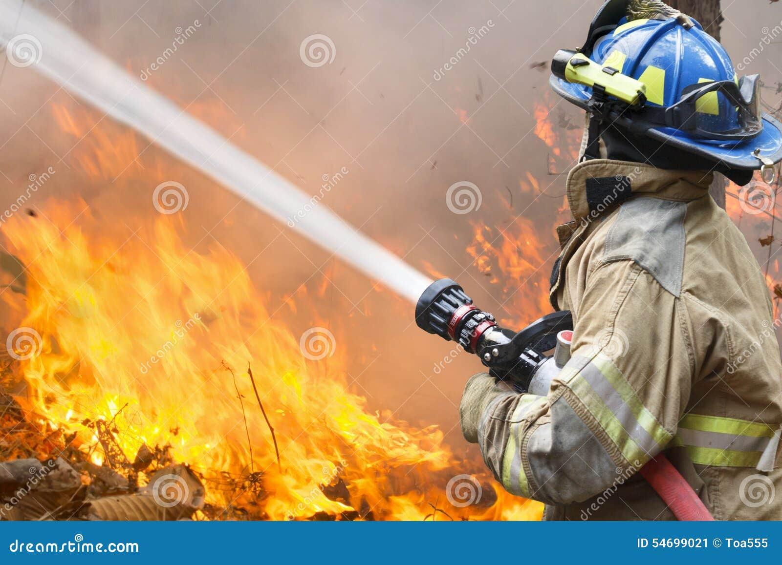 Пожарные сражают лесной пожар