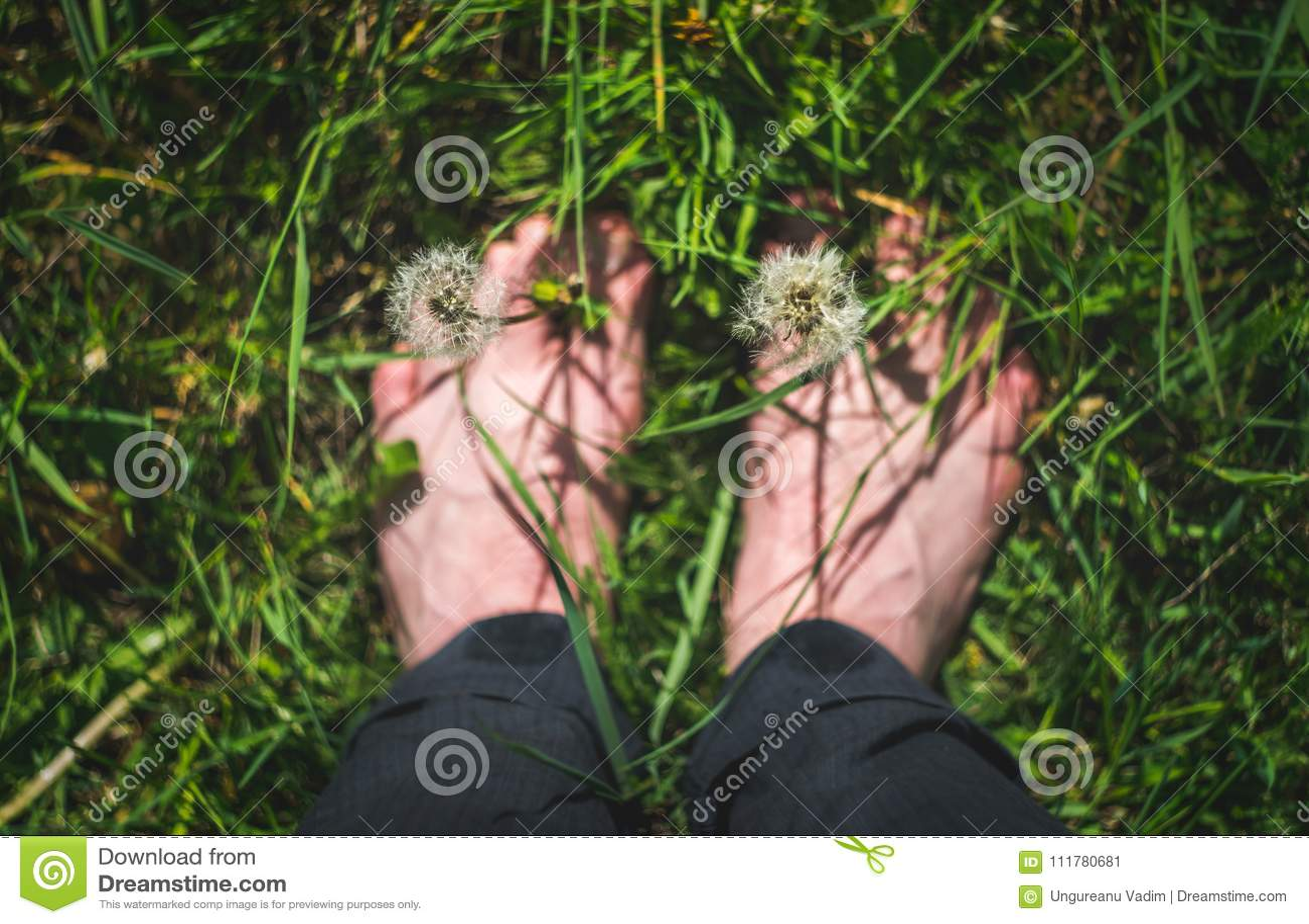 Пойдите вне и исследуйте и насладитесь концепцию природы