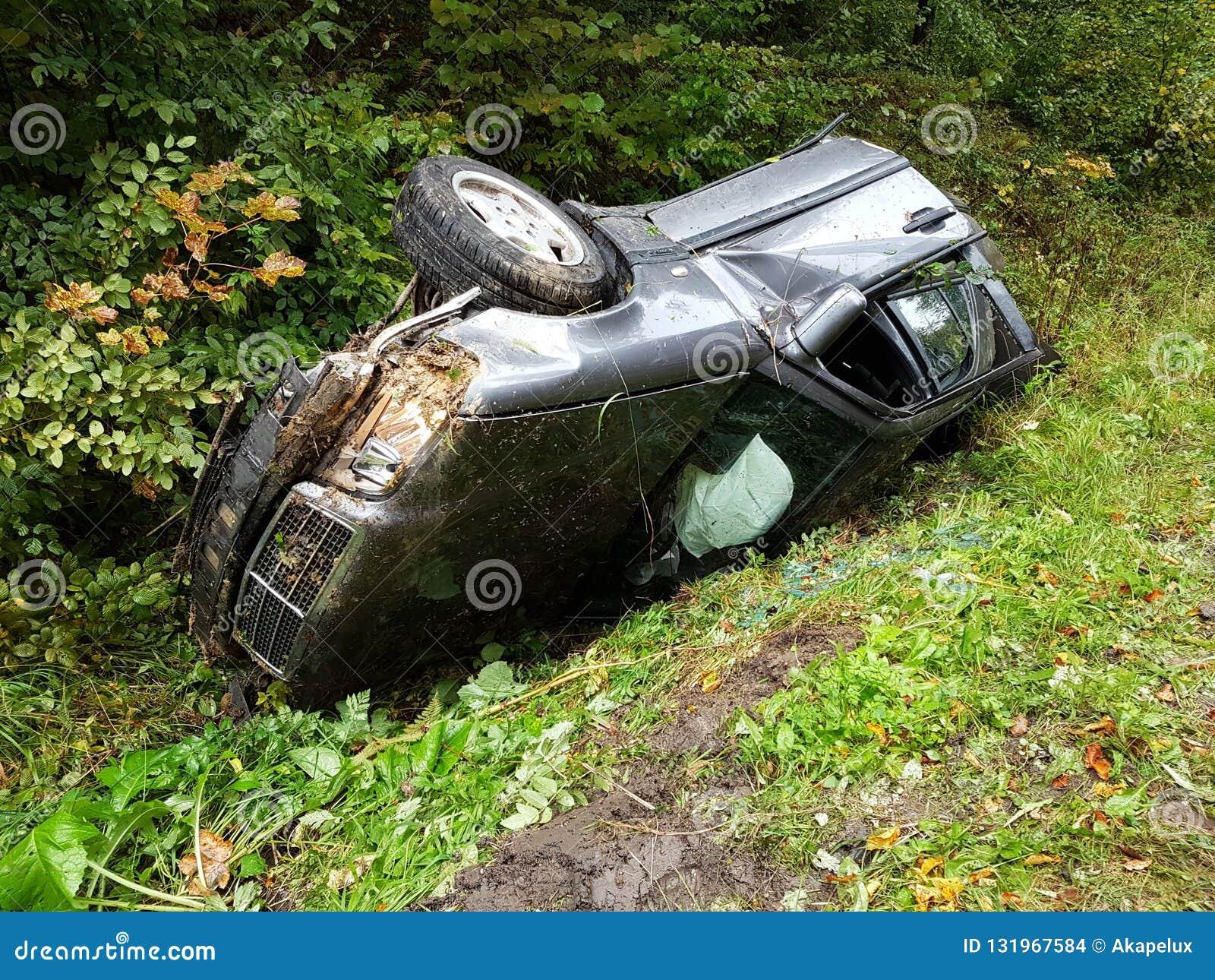Поколоченный серый седан автомобиля лежит во рве обочины среди сочной зеленой листвы куста летом Случай дорожного движения