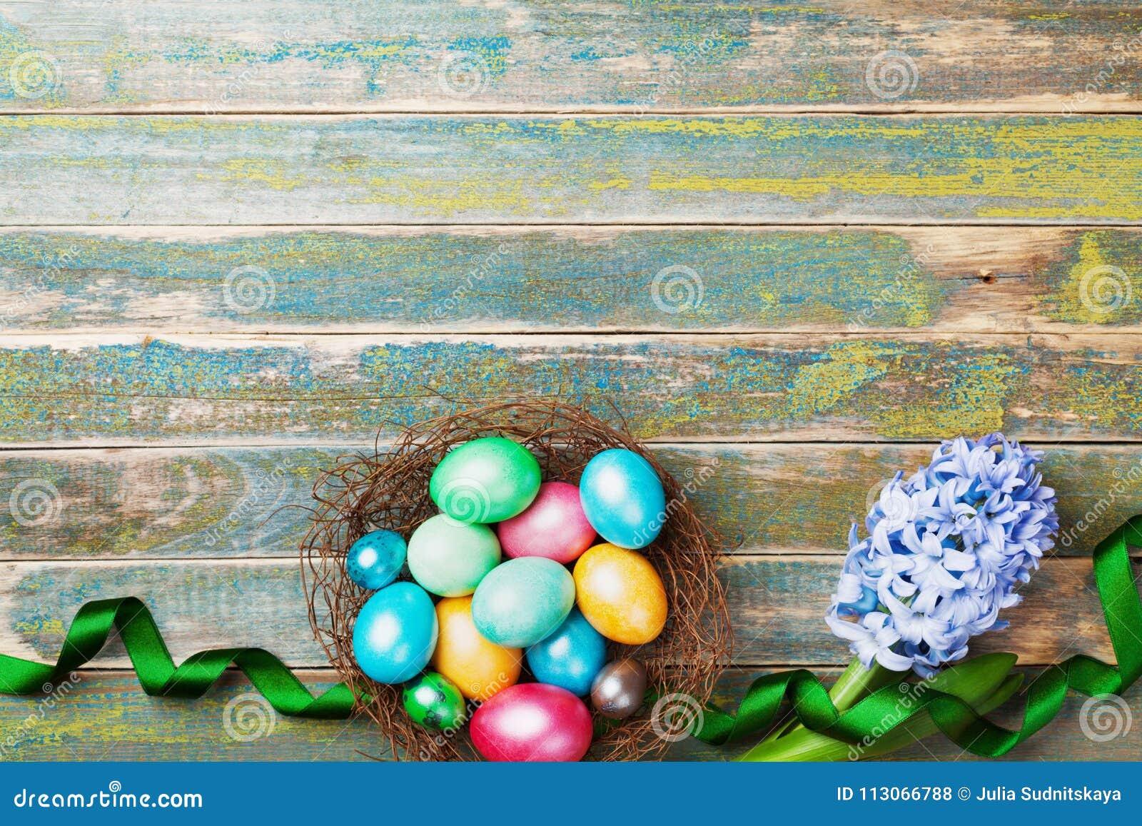 Покрашенные красочные пасхальные яйца в гнезде с взгляд сверху цветков и ленты гиацинта Праздничная предпосылка на праздник весны