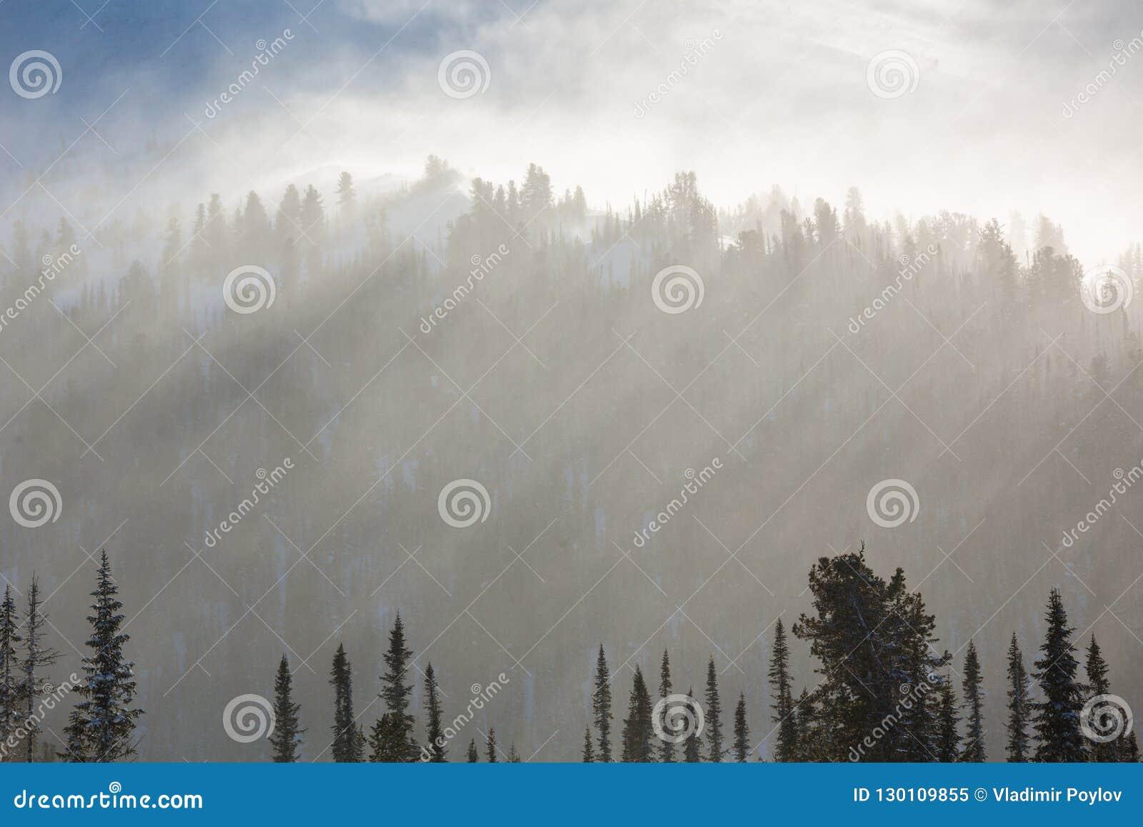 покрытые валы снежка гор горы дома hoarfrost Лучи ` s солнца освещают деревья