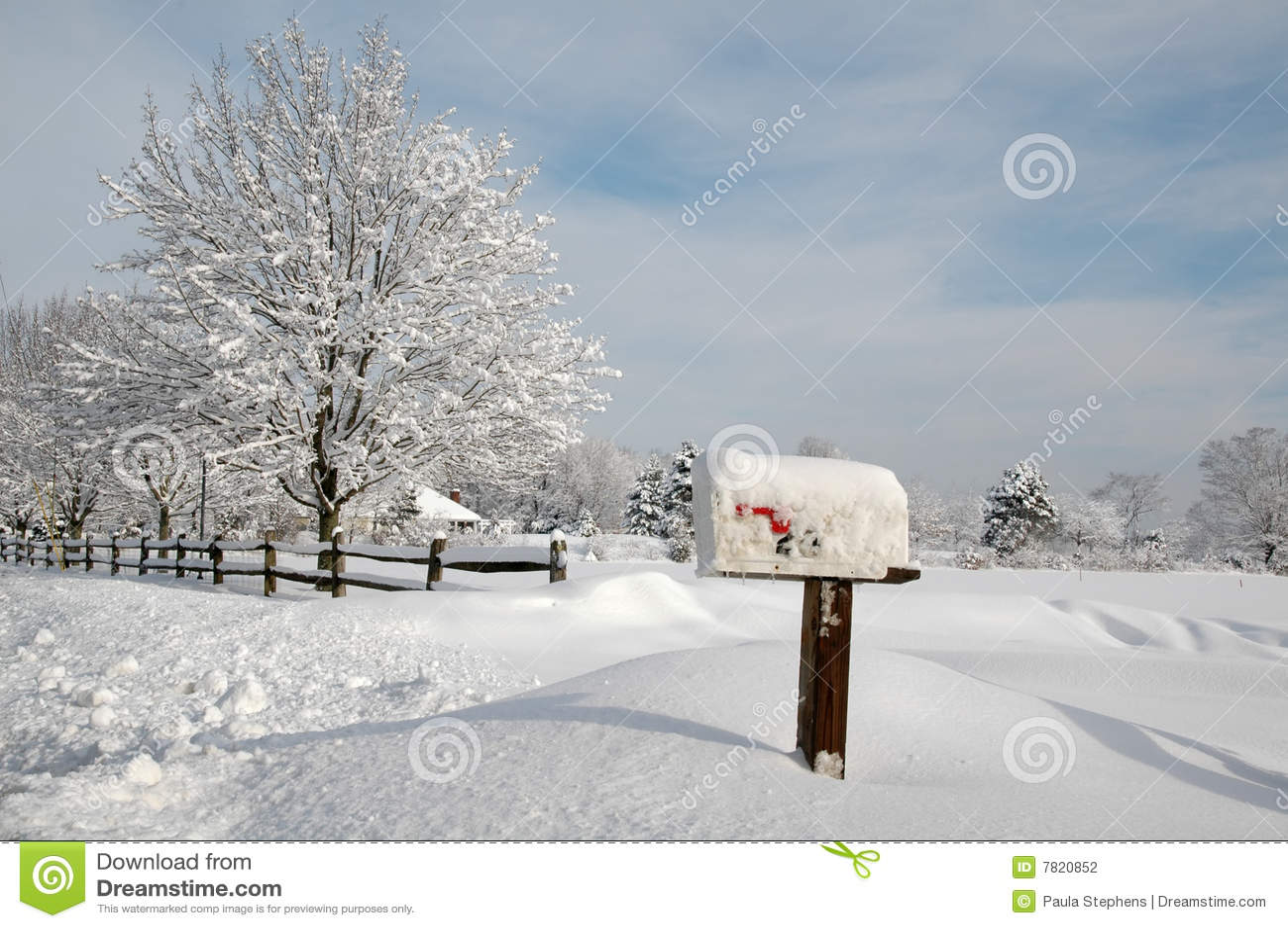 покрытый снежок ландшафта