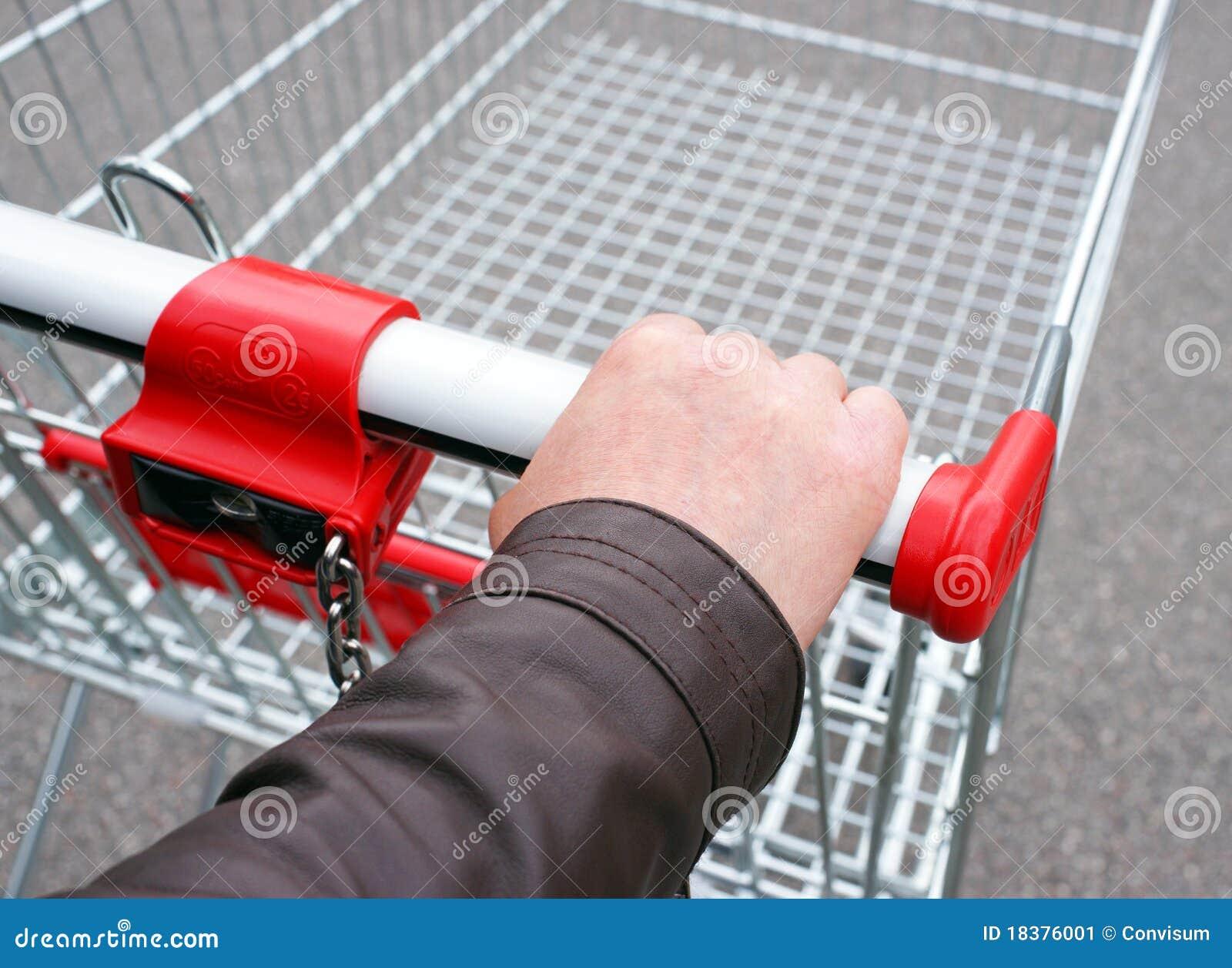 покупка принципиальной схемы тележки
