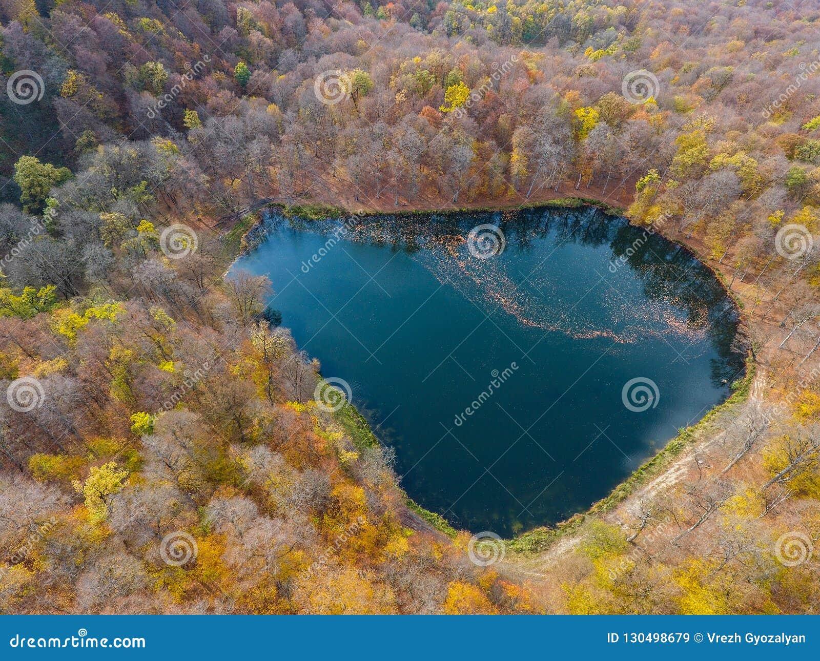 Полет трутня над спрятанным Gosh озером в армянских лесах осени
