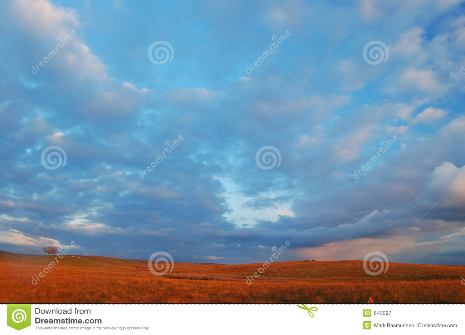 Download поле вечера стоковое изображение. изображение насчитывающей farmland - 643097