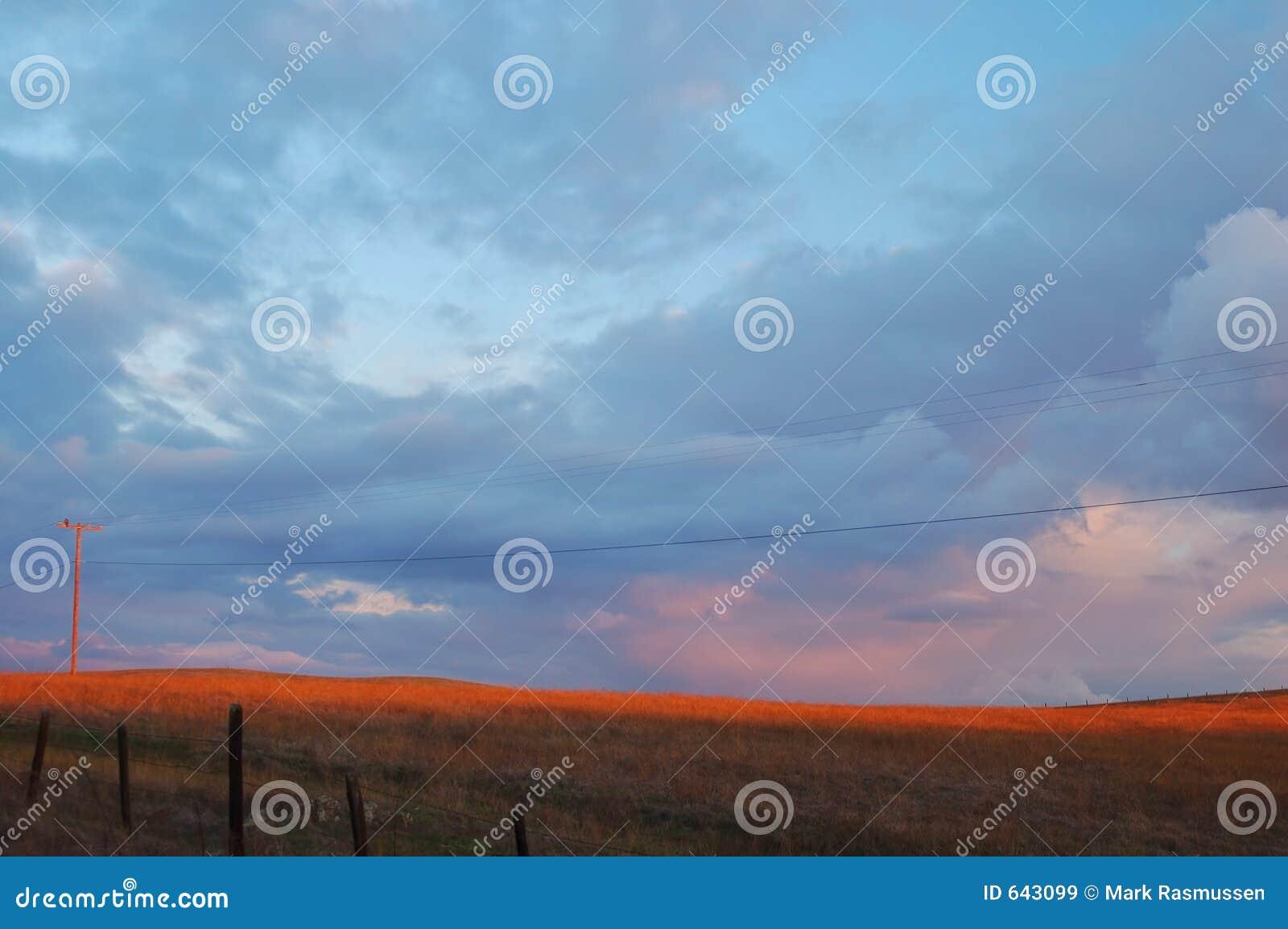 Download поле вечера стоковое изображение. изображение насчитывающей сельско - 643099