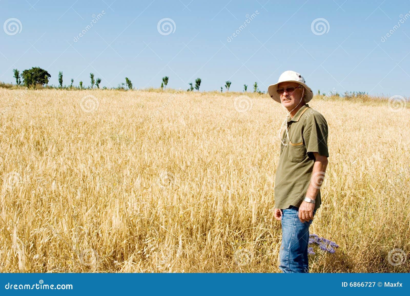 поле хуторянина