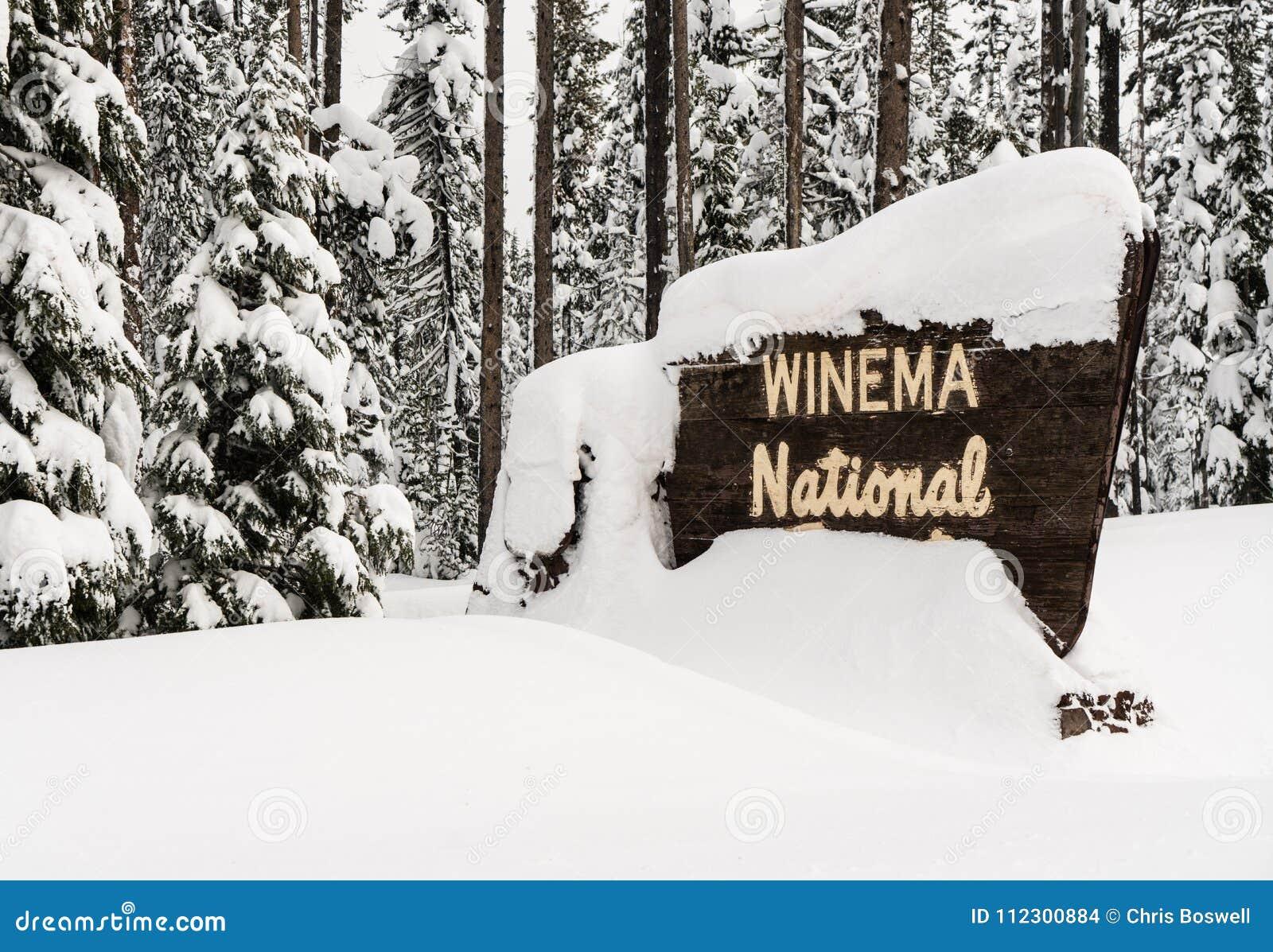 Положительный знак национального леса Winema древесин зимы