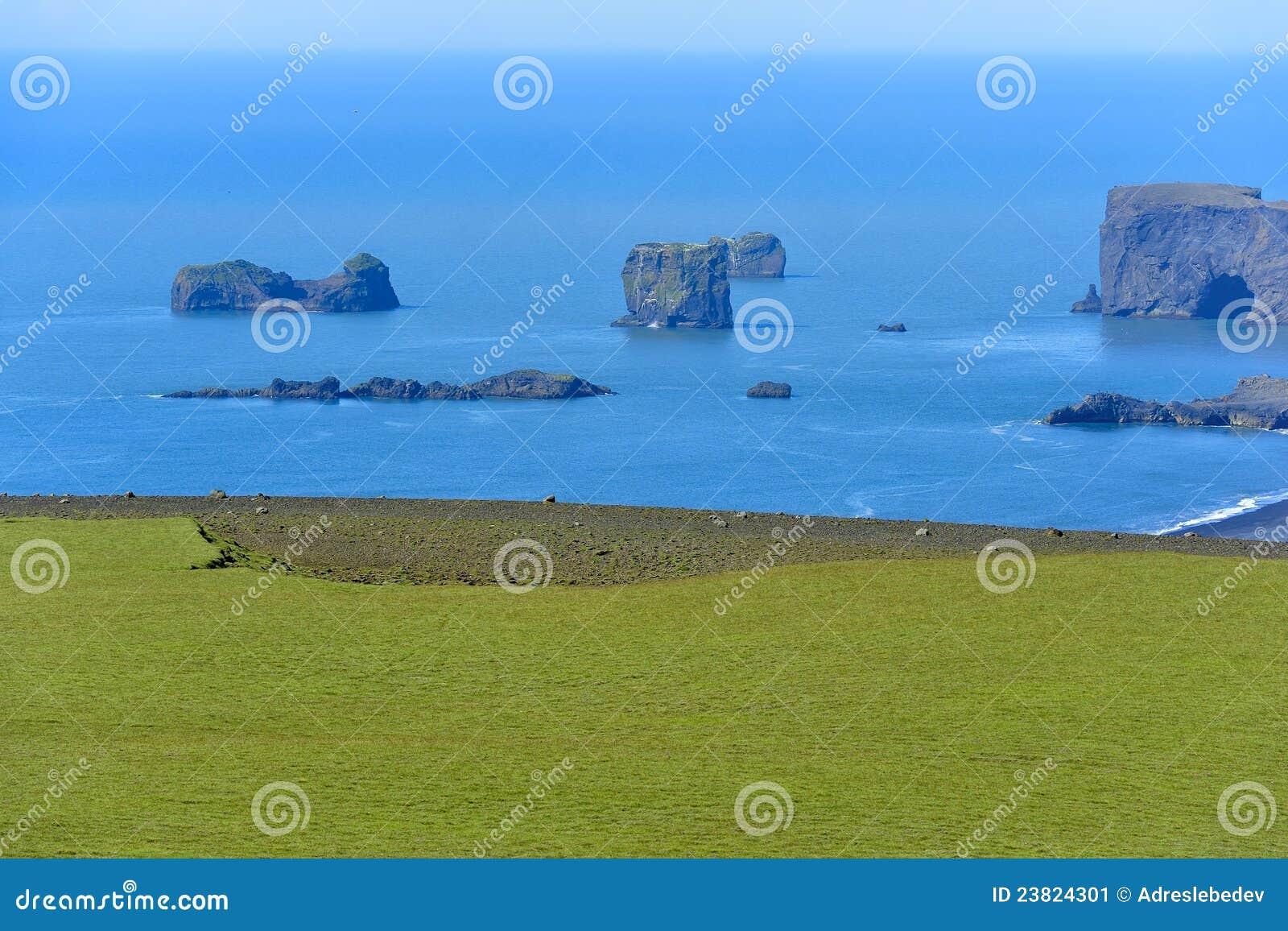 поплавайте вдоль побережья взгляд Исландии dyrholaey южный