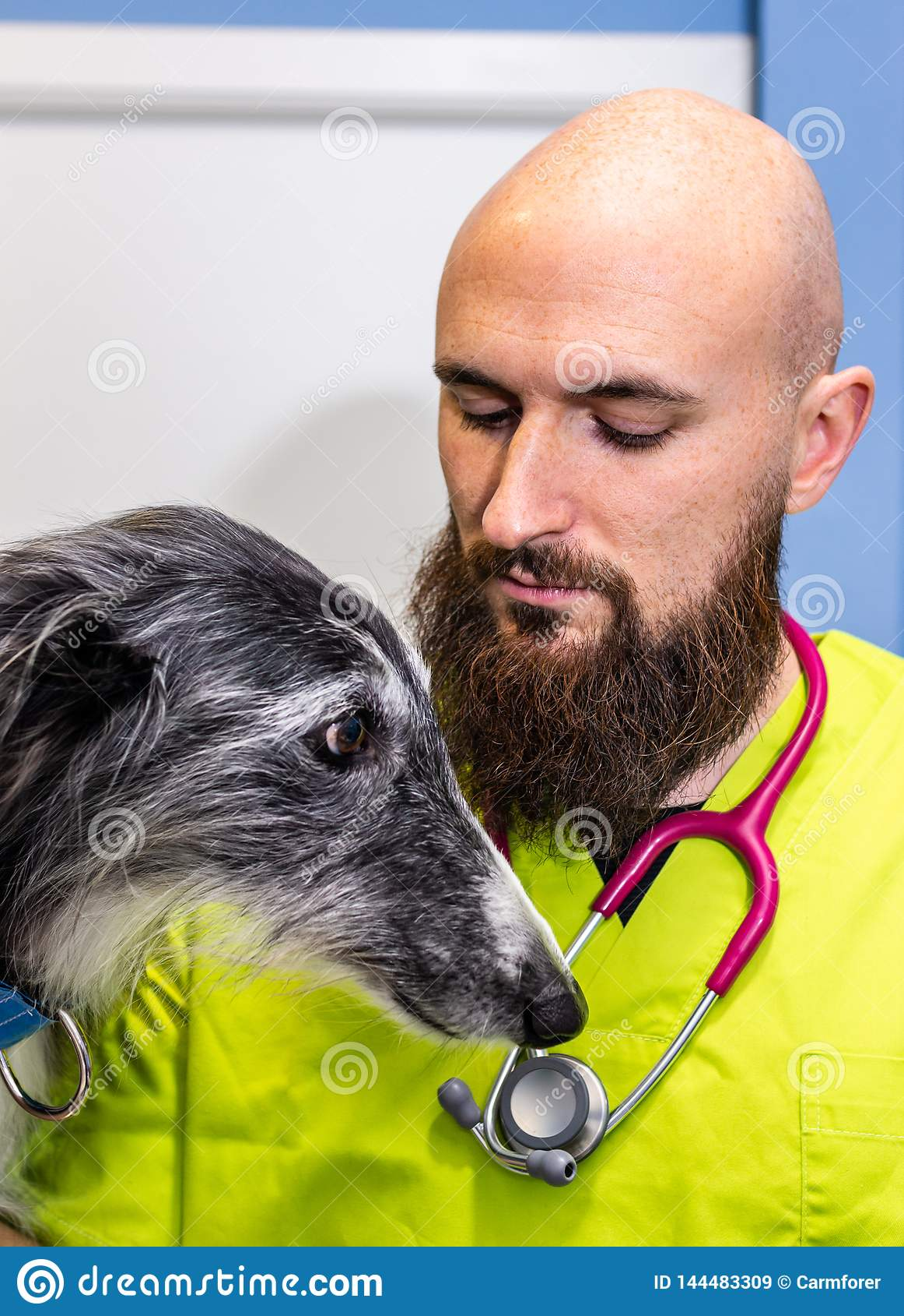Портрет ветеринара и борзой