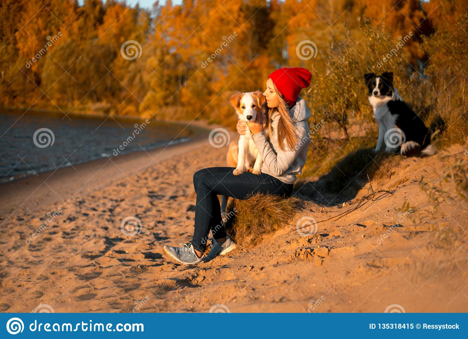 Портрет счастливой девушки со смешной собакой Коллиы границы 2 на пляже на взморье лес осени желтый на предпосылке