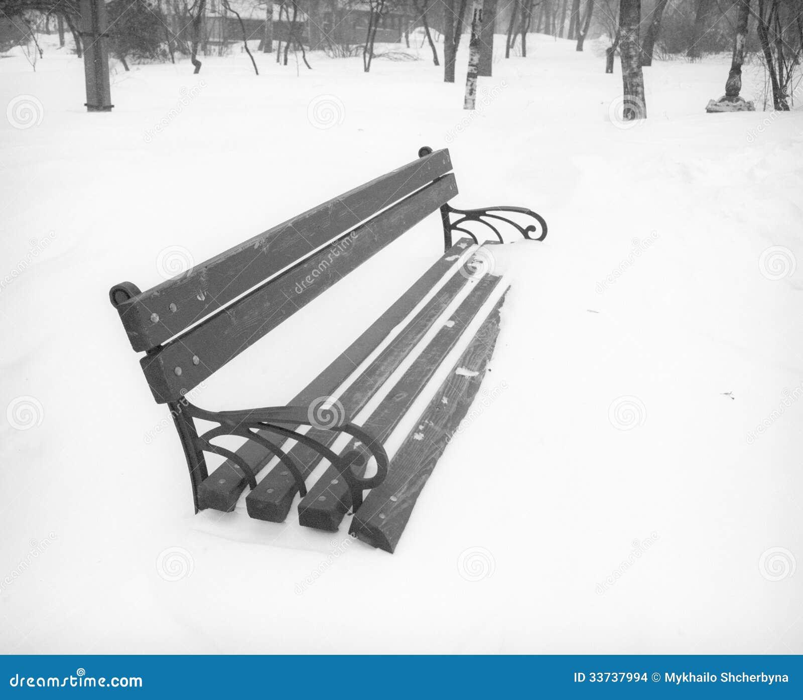 После пурги в парке города.