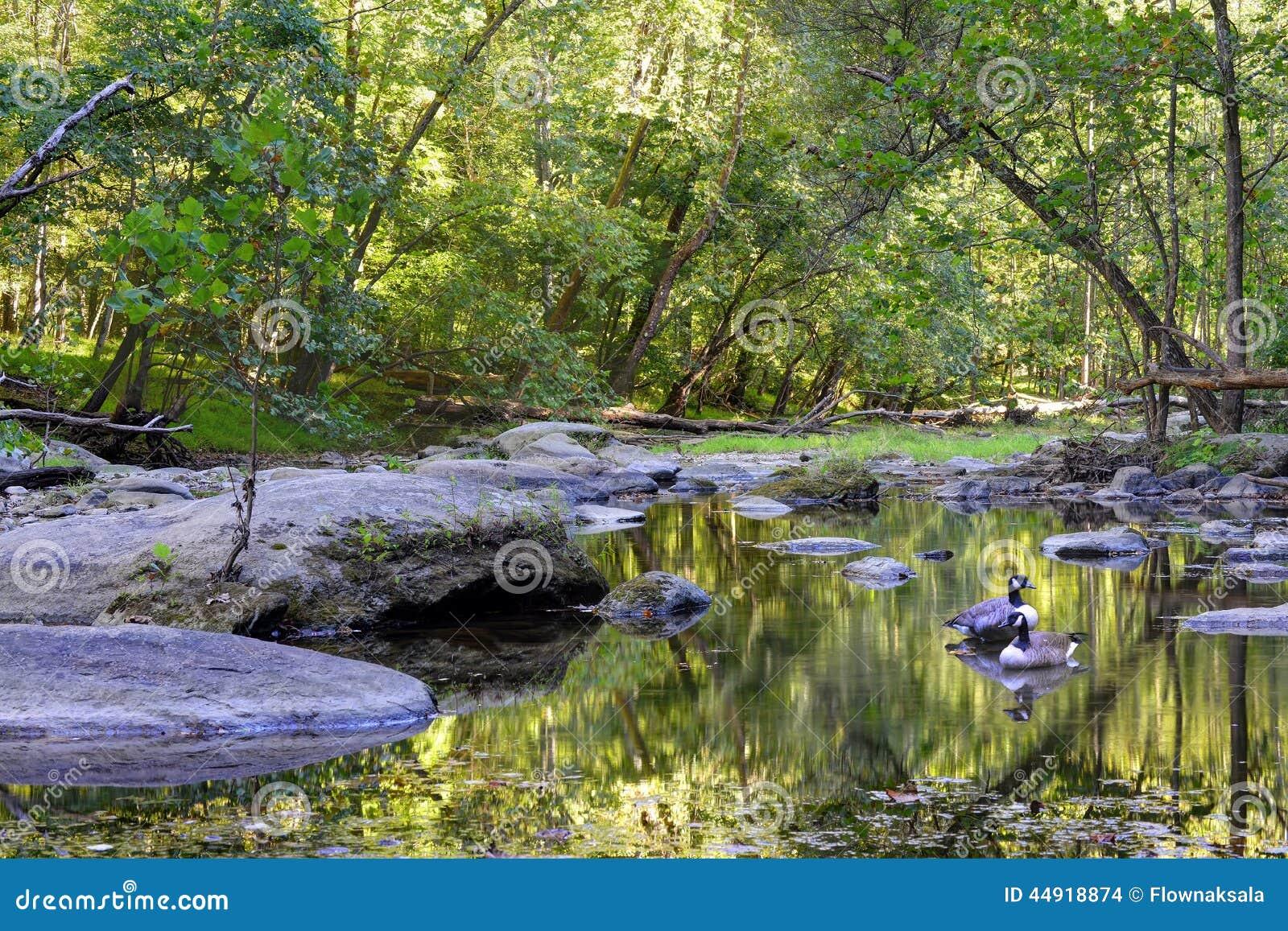 Поток Аппалачи Мэриленда