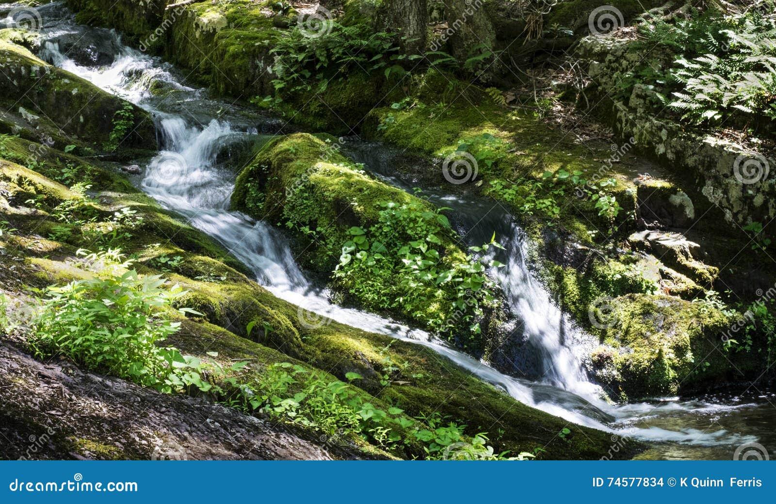 Поток горы каскадирует вниз уклон