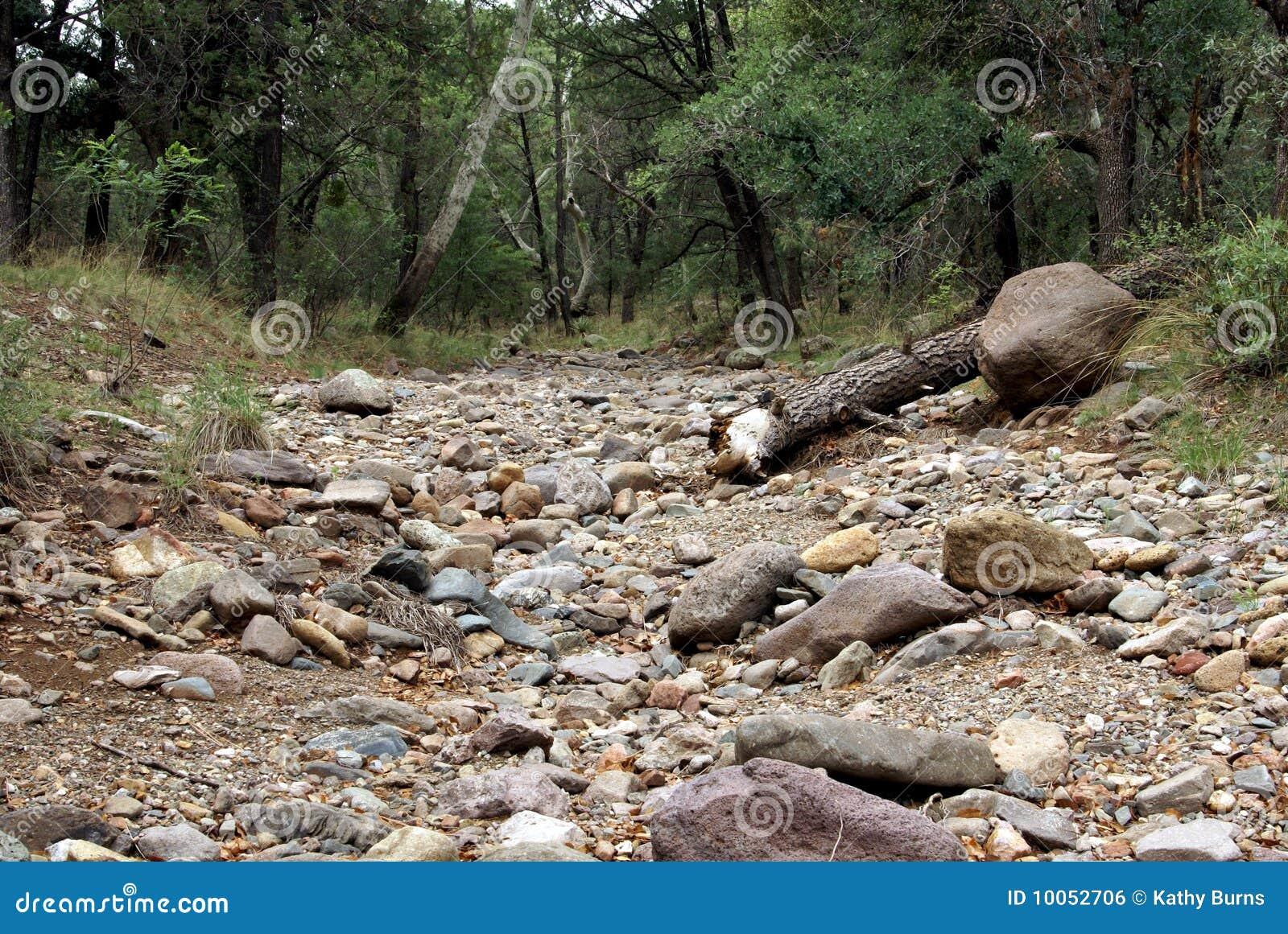 поток кровати сухой