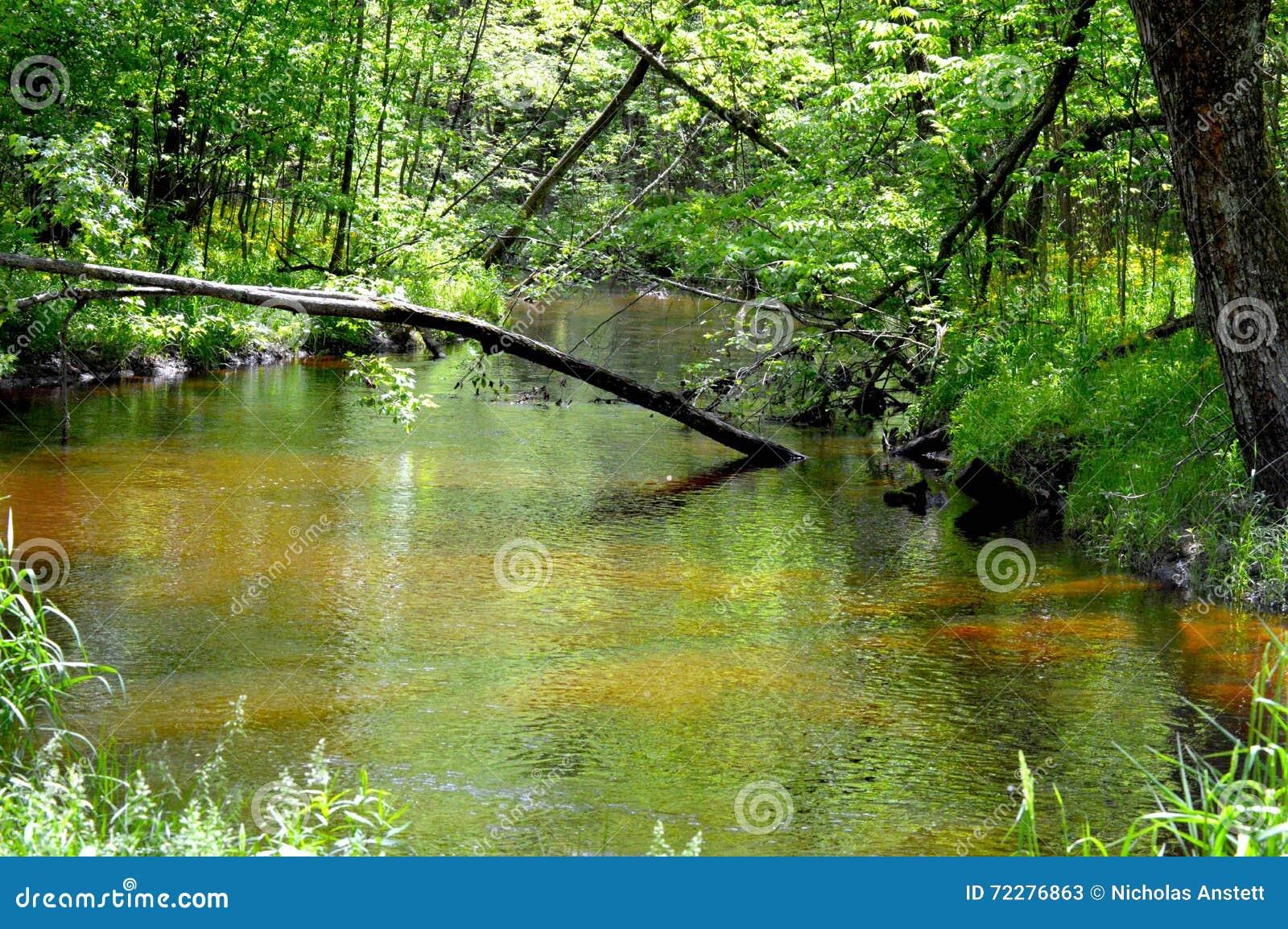 Download Поток стоковое изображение. изображение насчитывающей поток - 72276863