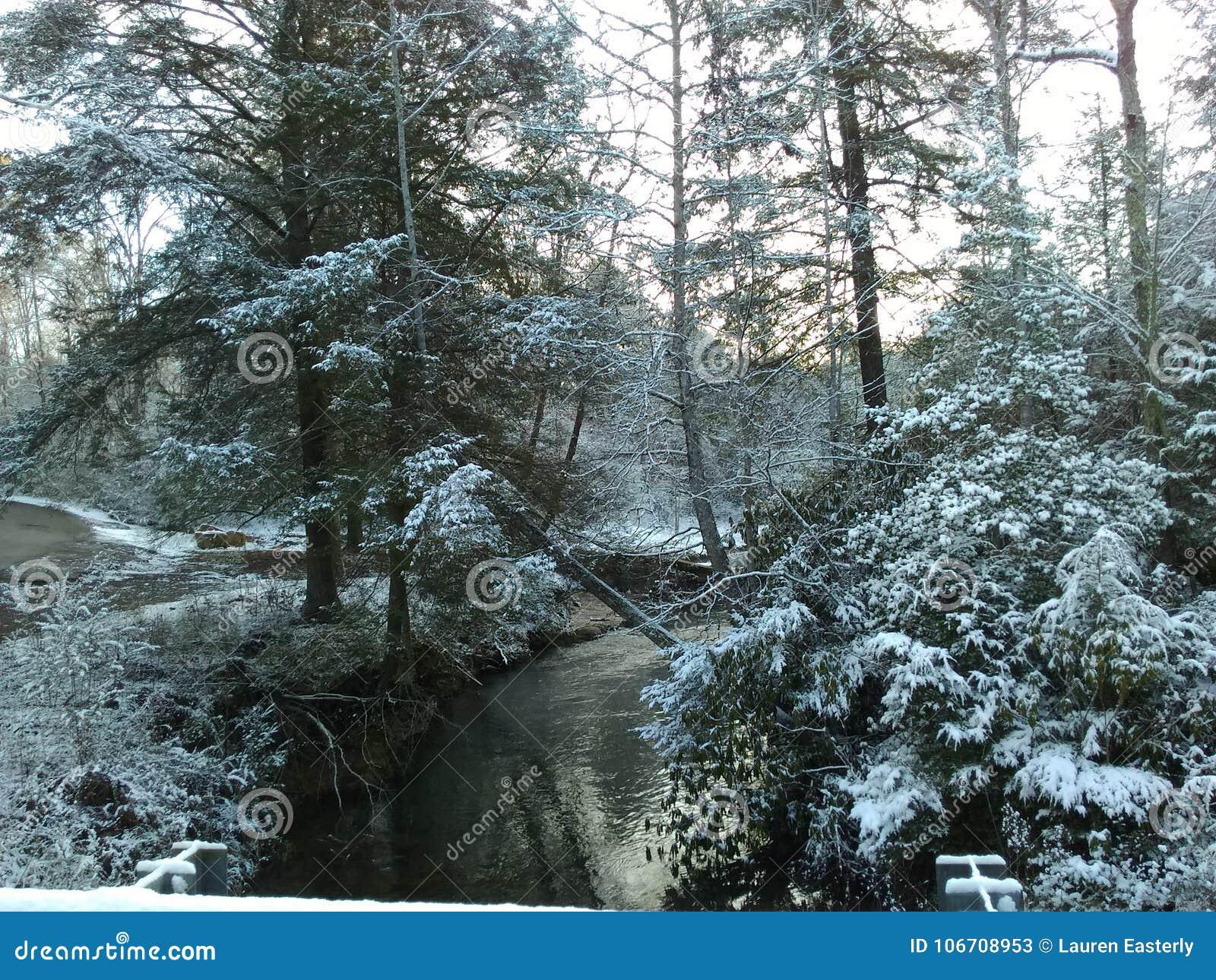 Поток Snowy