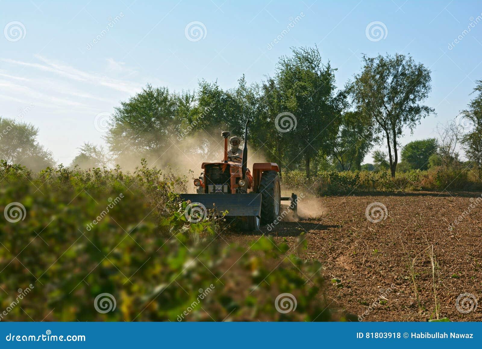 Почва фермера паша для подготовки seedbed с машиной tiller' Rotavator 'Rotary