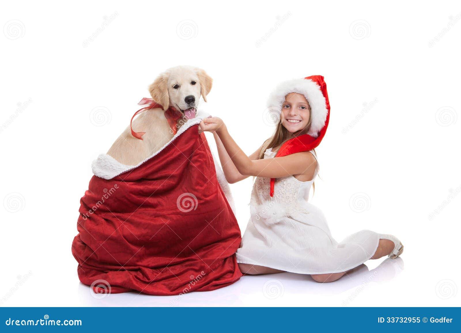 Подарок собаки праздника рождества