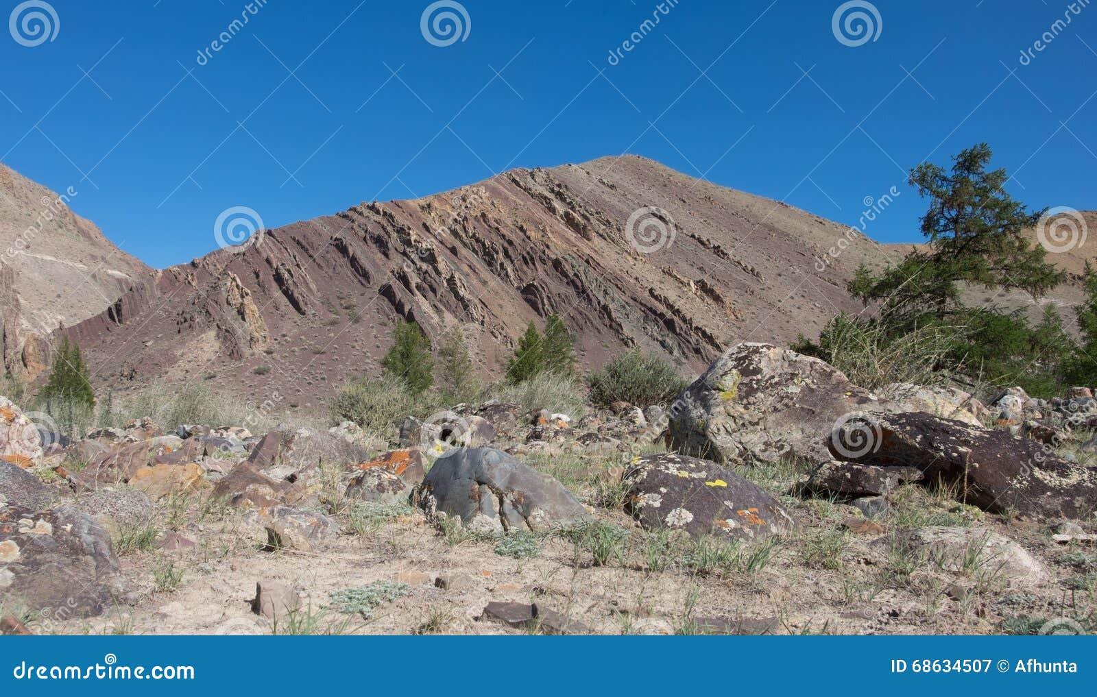 Подвергли действию геологохимические слои