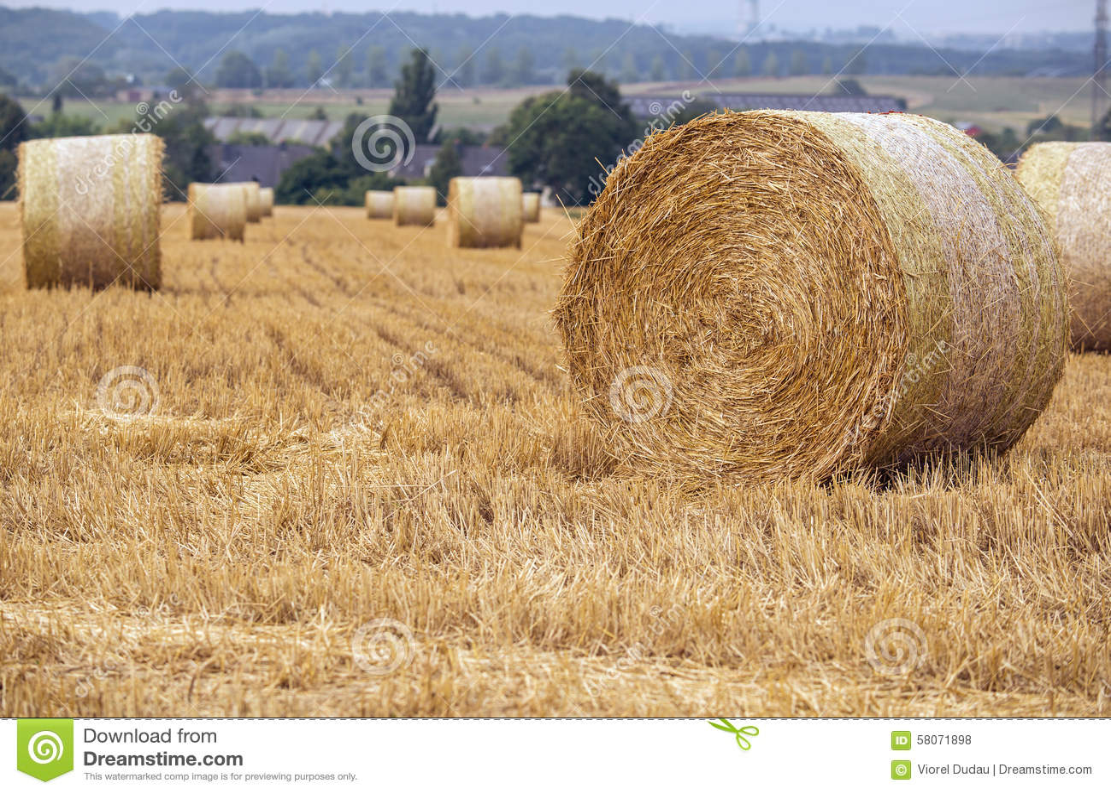Фото со стогами сена фото 76-147