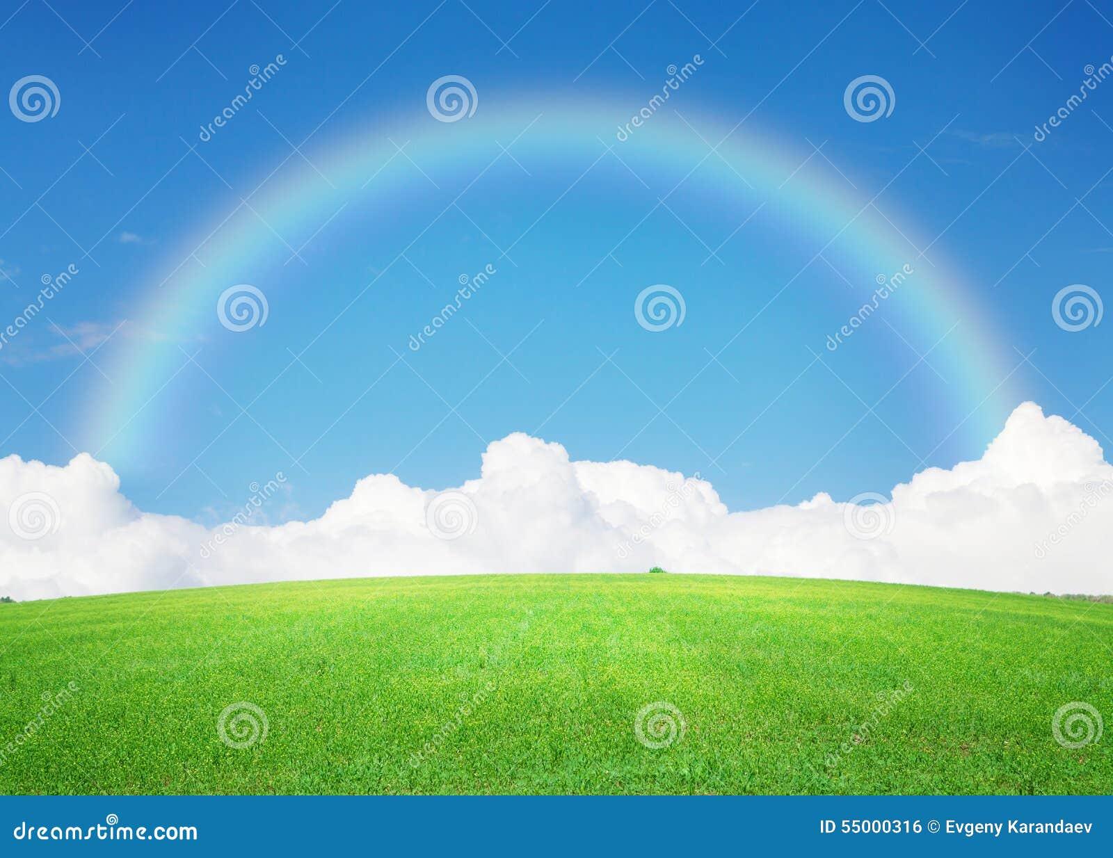 Поле зеленой травы, голубое небо с облаками на горизонте и ...