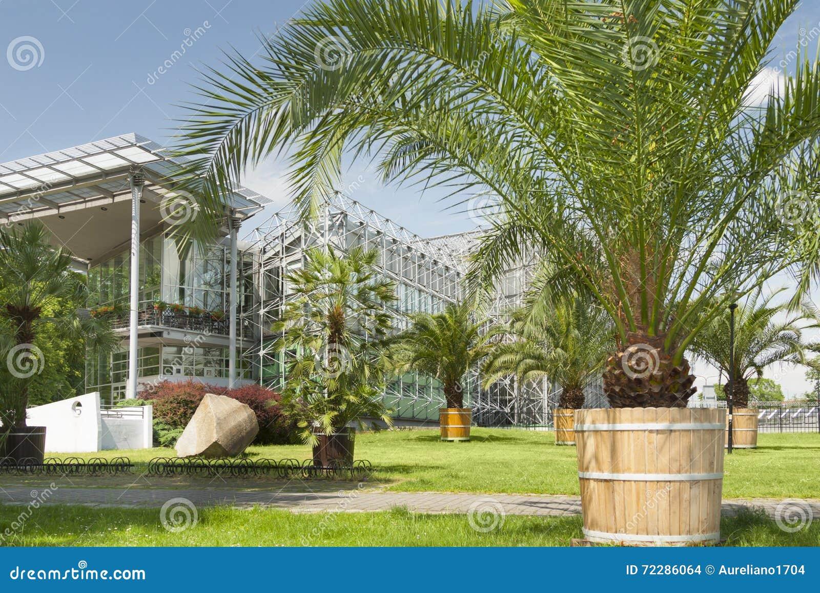 Download Польша, Силезия, Гливице, дом ладони Стоковое Фото - изображение насчитывающей green, завод: 72286064