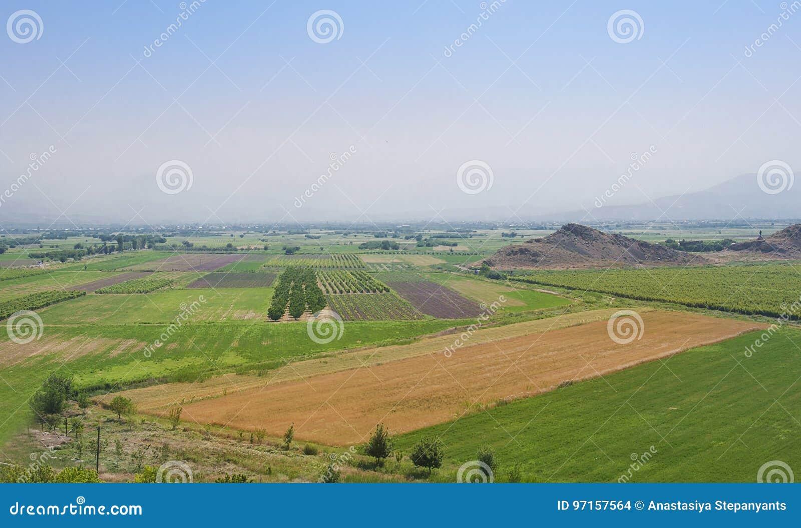 Поля в долине Арарата в армянских гористых местностях