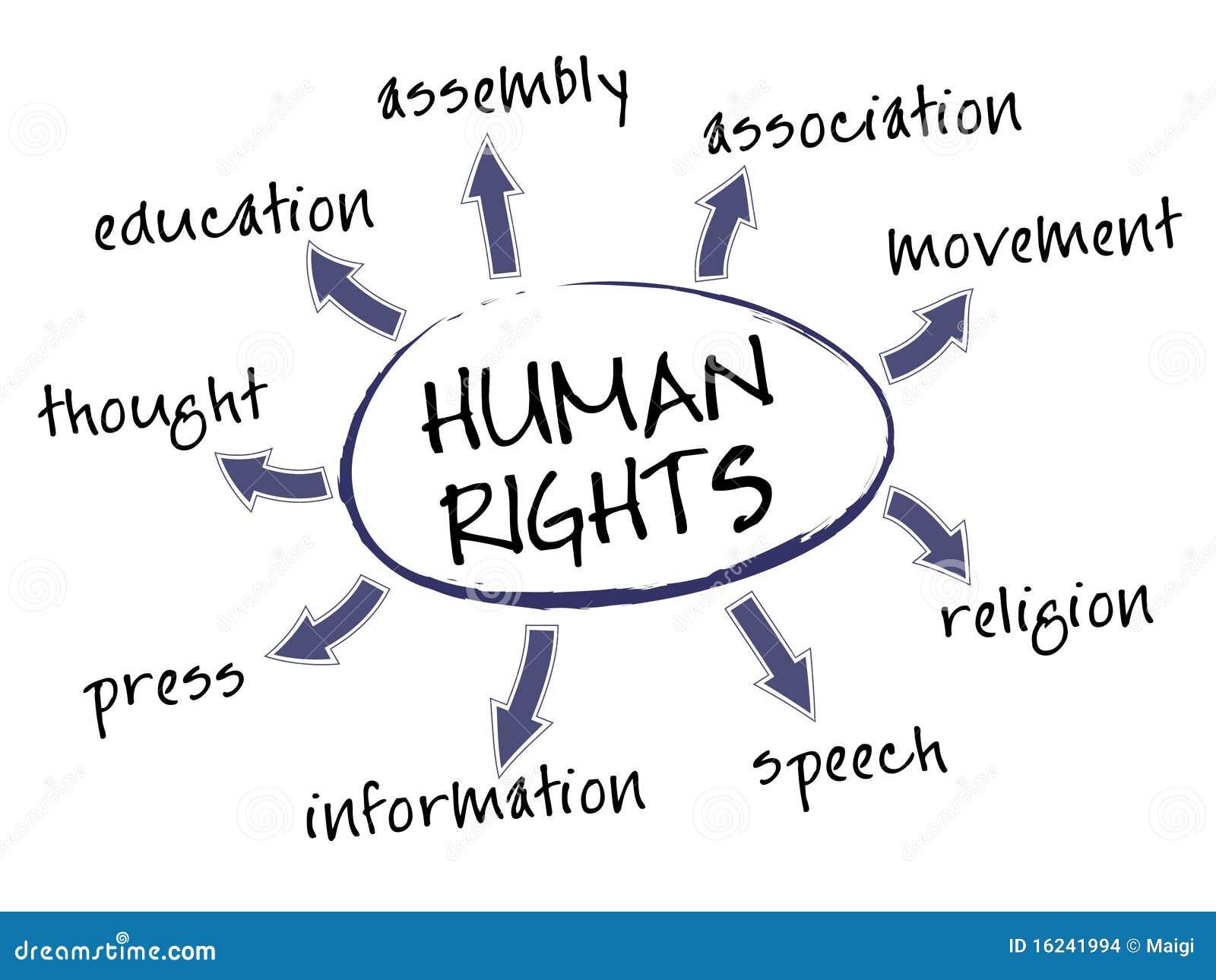 права человека диаграммы