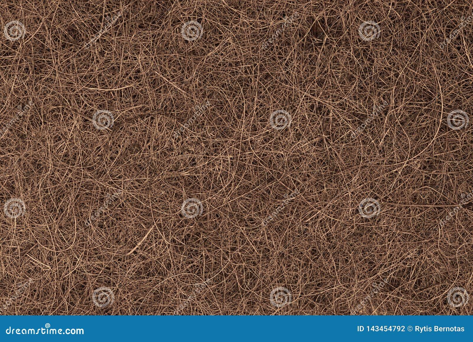 Предпосылка волокна кокоса Брауна