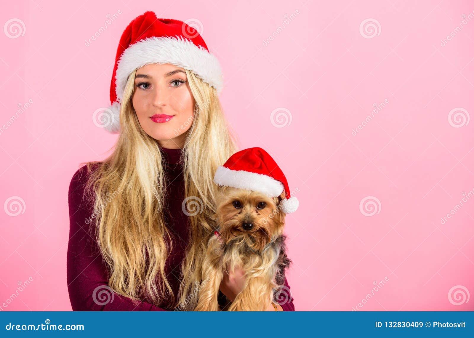 Предпосылка пинка любимца собаки владением девушки привлекательная белокурая Женщина со шляпой santa носки щенка Отпразднуйте рож