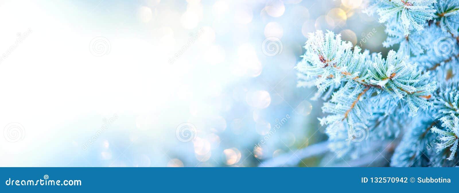 Предпосылка снега праздника дерева зимы Дизайн искусства границы голубые спрус, дерево рождества и Нового Года, абстрактный голуб
