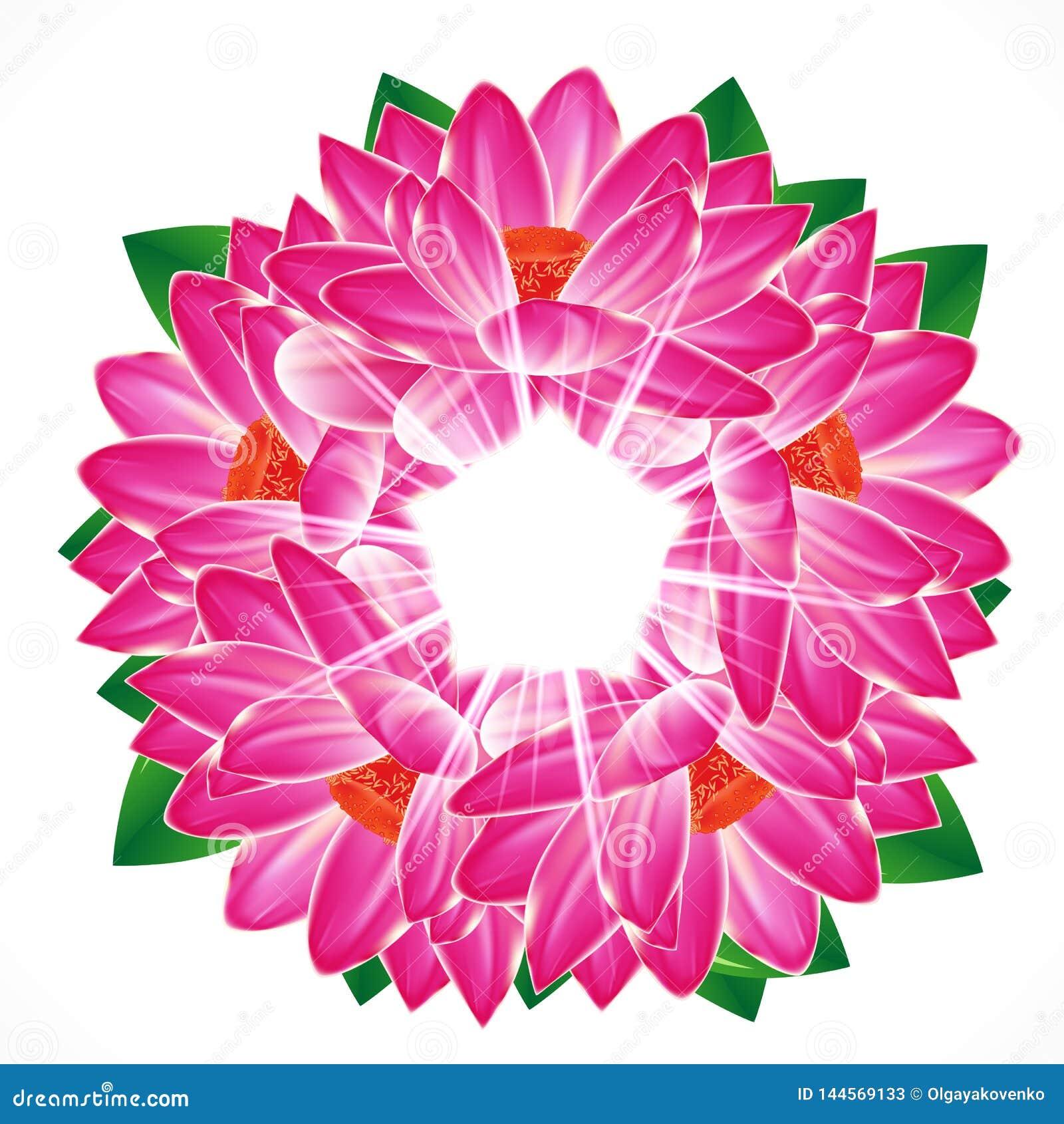 Предпосылка цветка лилии воды
