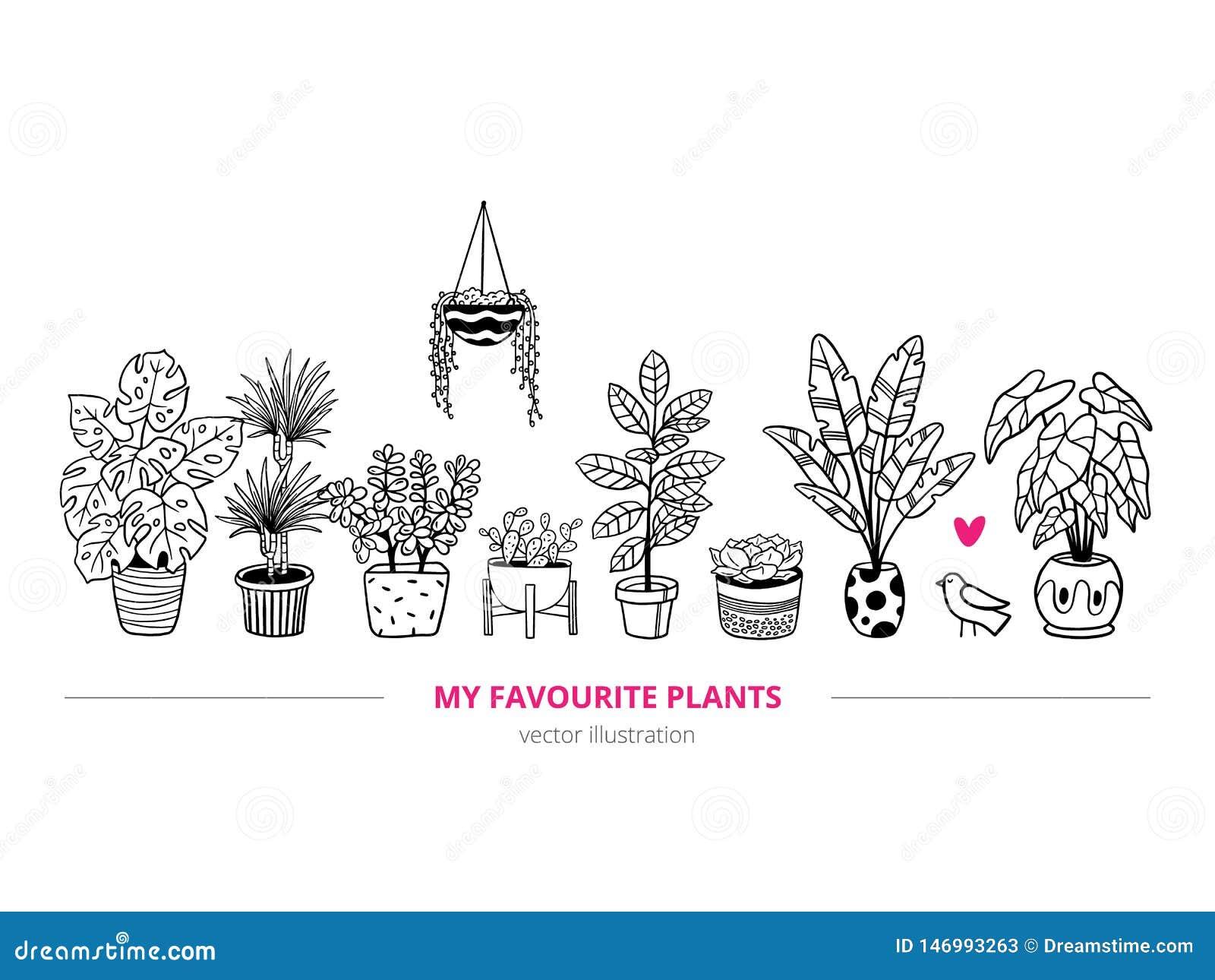 Прекрасные комнатные растения с птицей в freehand стиле