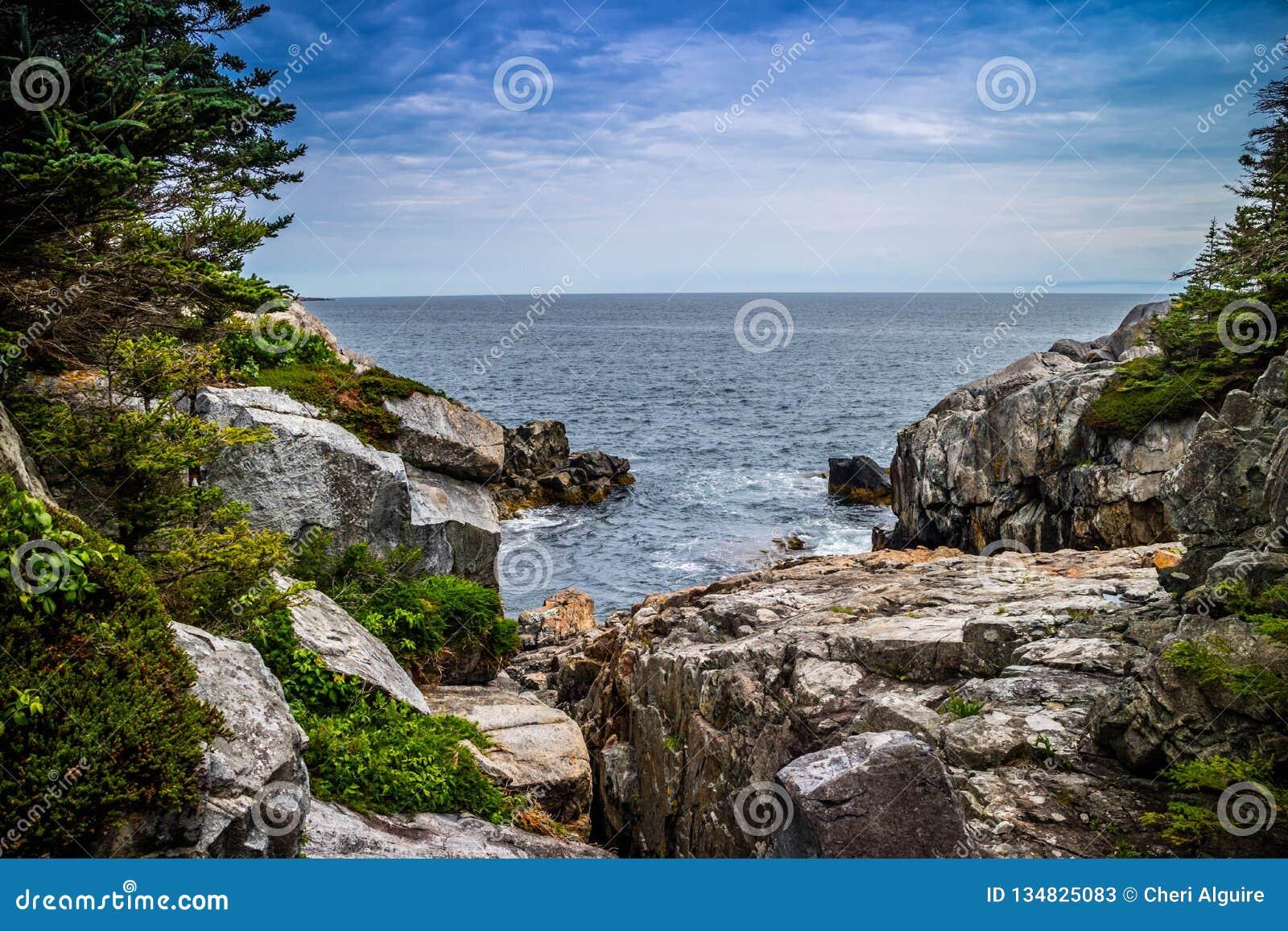 Прекрасный au Haut острова гавани утки в национальном парке Acadia, Мейне