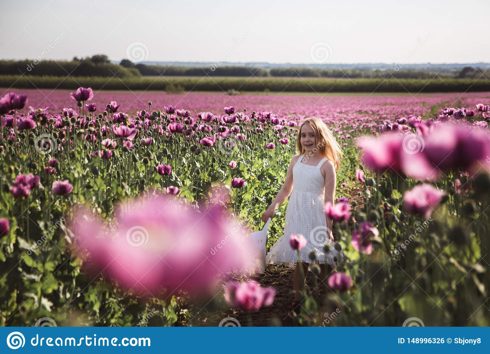 Прелестная маленькая девочка с длинными волосами в идти белого платья сиротливый в поле цветков мака сирени