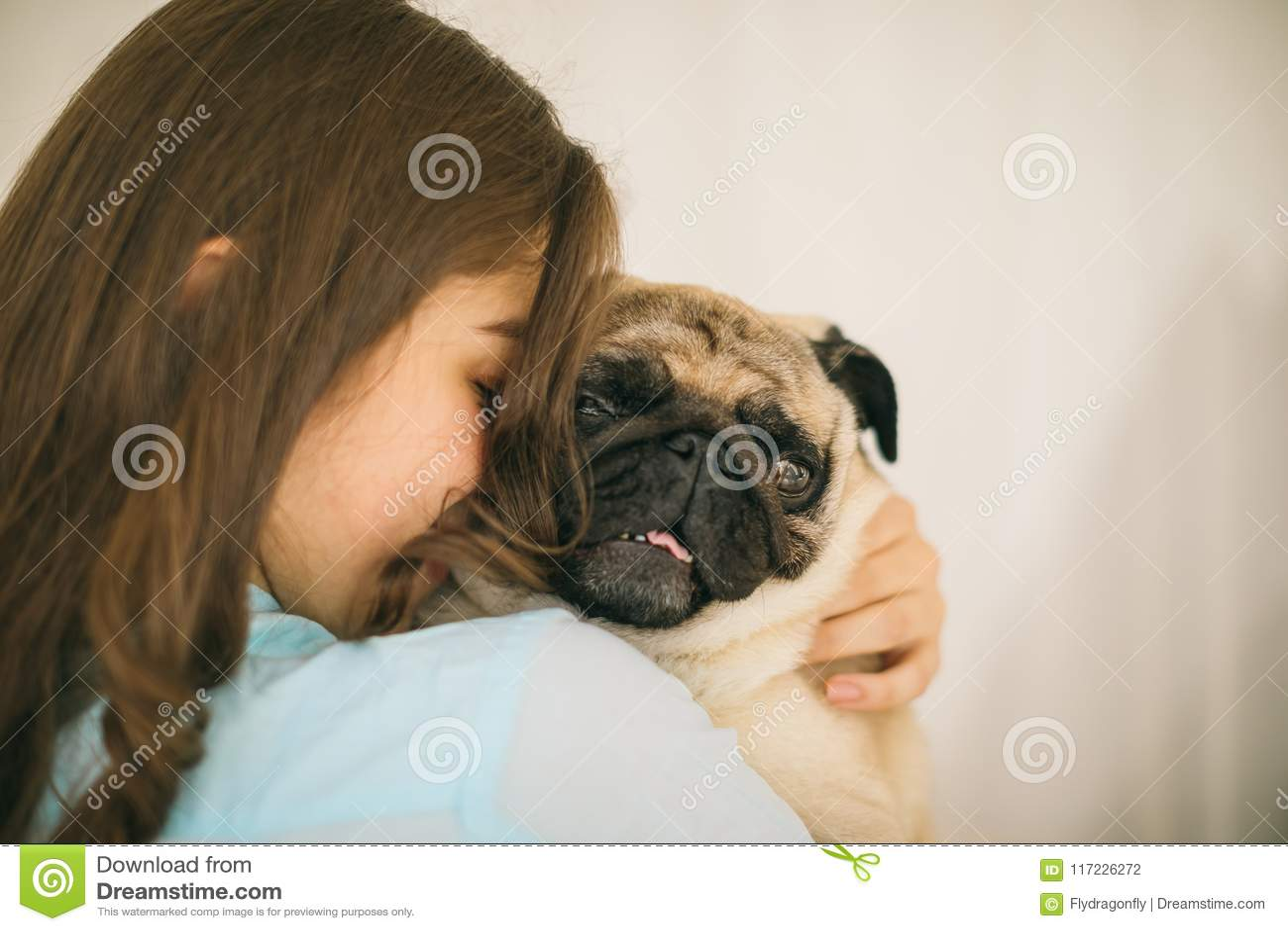 прелестная собака малая Человеческие влюбленность и доверие