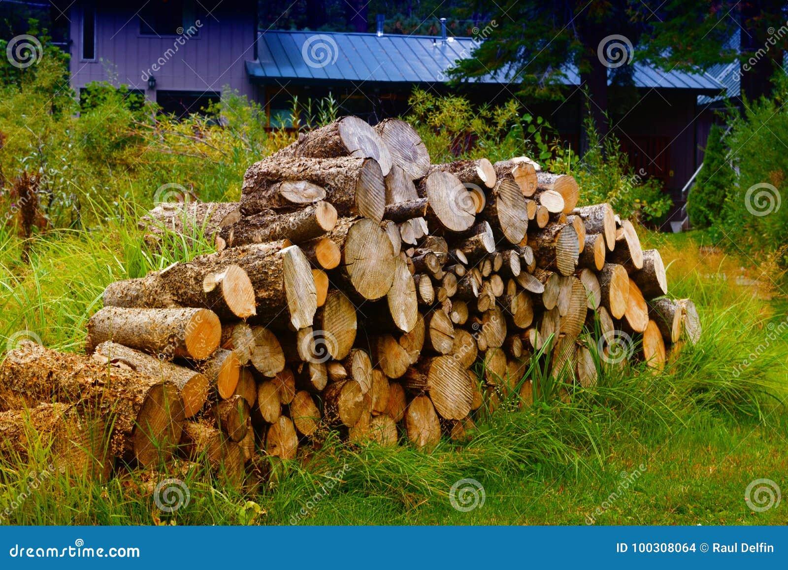 Прерванные древесины