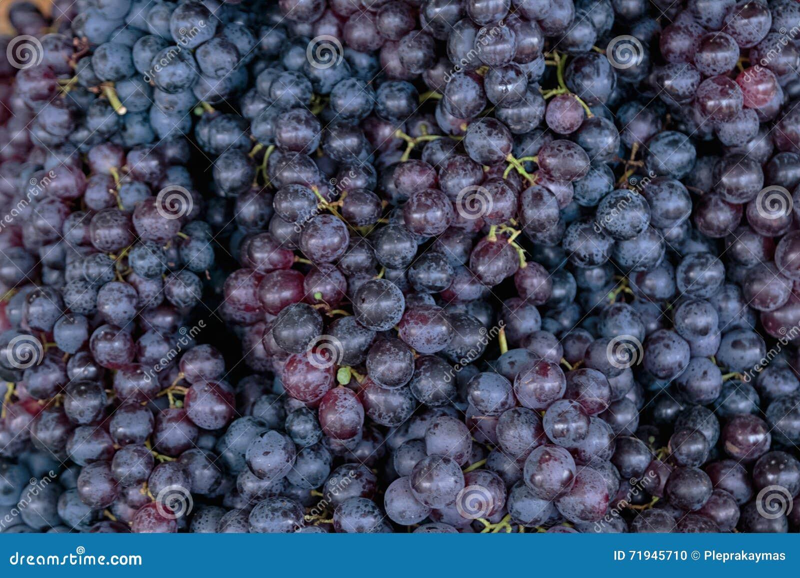 Предпосылка виноградин красного вина