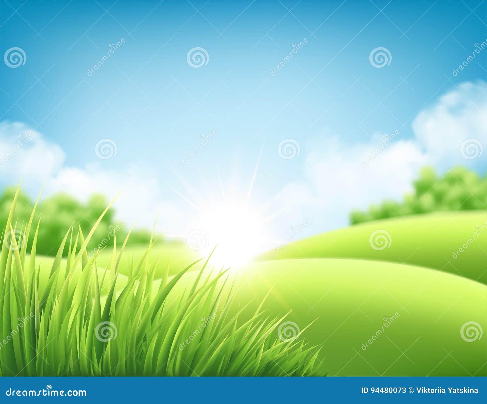 Предпосылка восхода солнца природы лета, ландшафт с зелеными холмами и лугами, голубое небо и облака также вектор иллюстрации при