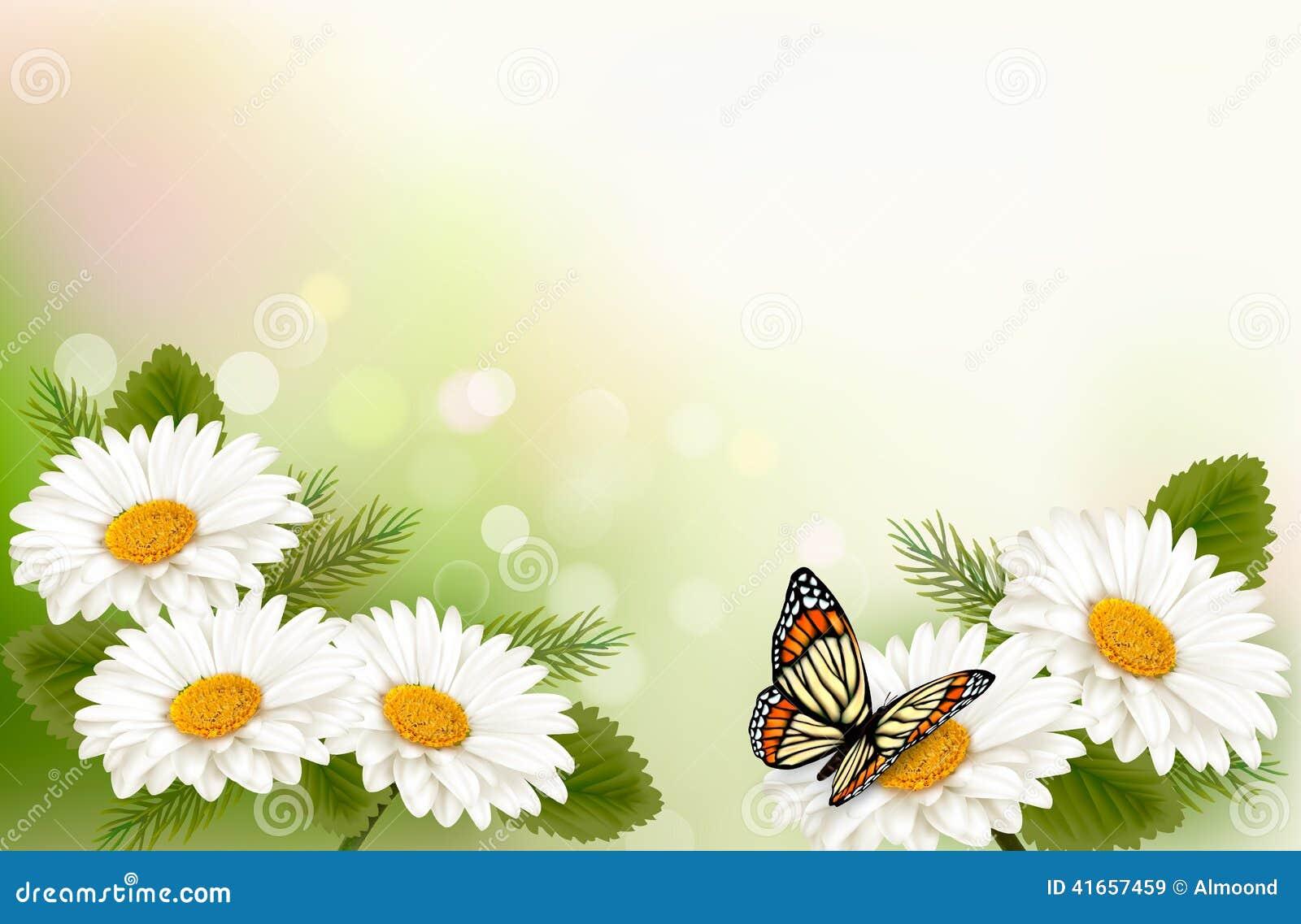 Предпосылка лета с желтыми красивыми цветками